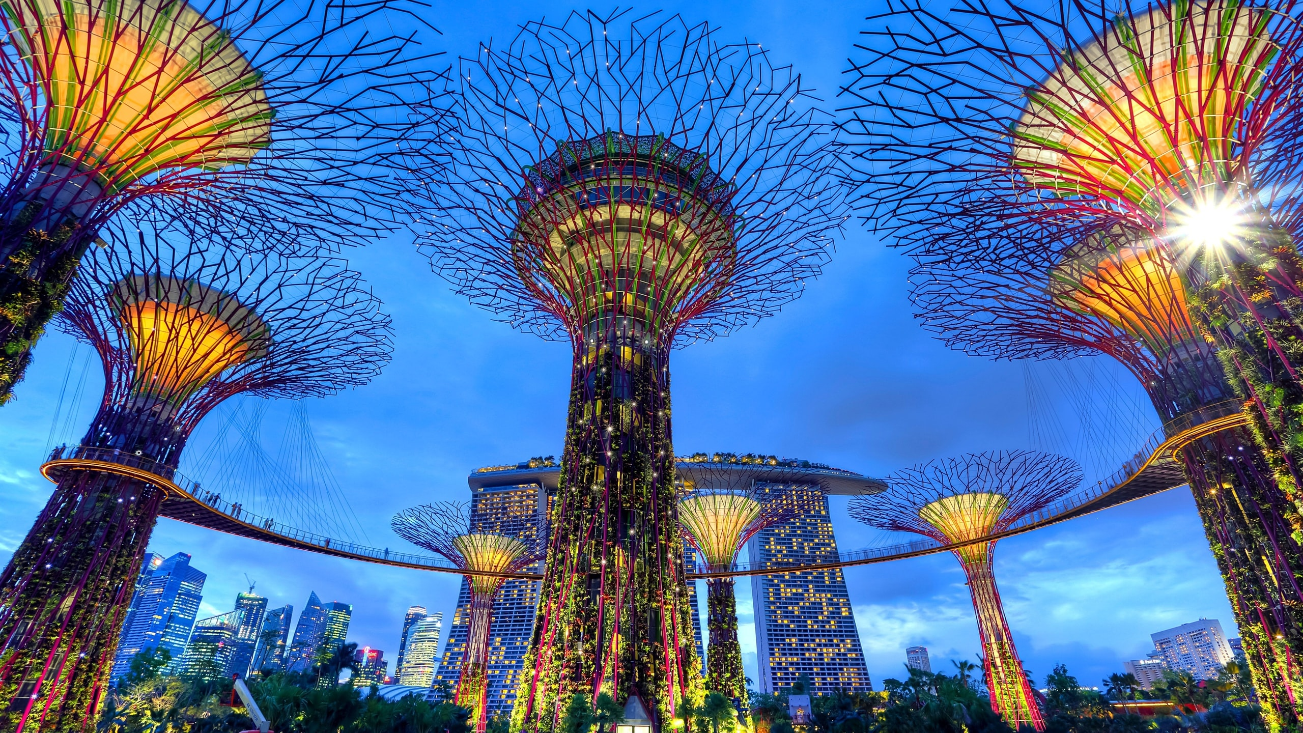 Garden's by the bay, Singapore