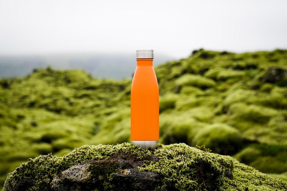 緑の苔にオレンジのタンブラー