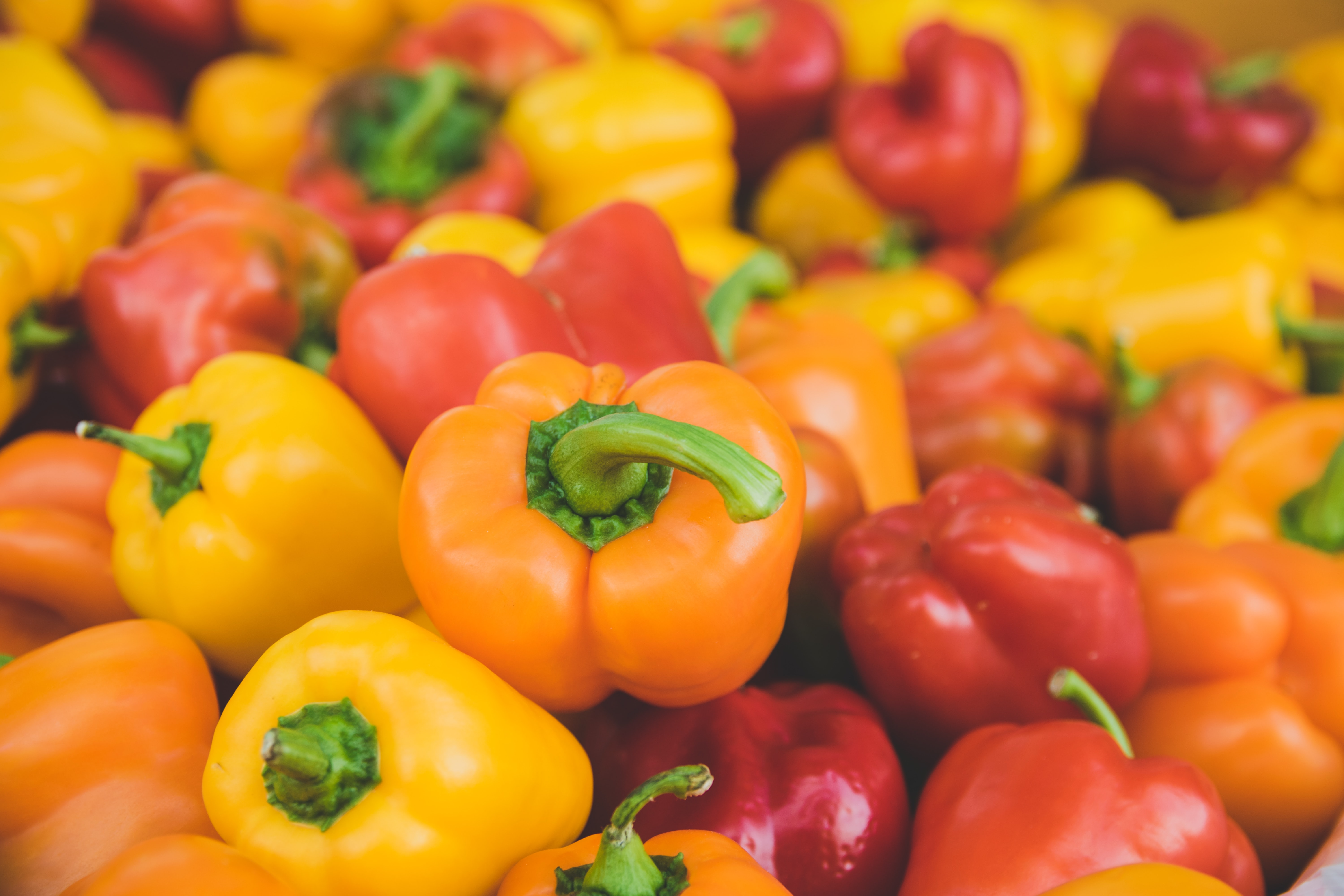 orange and red bellpepper lot
