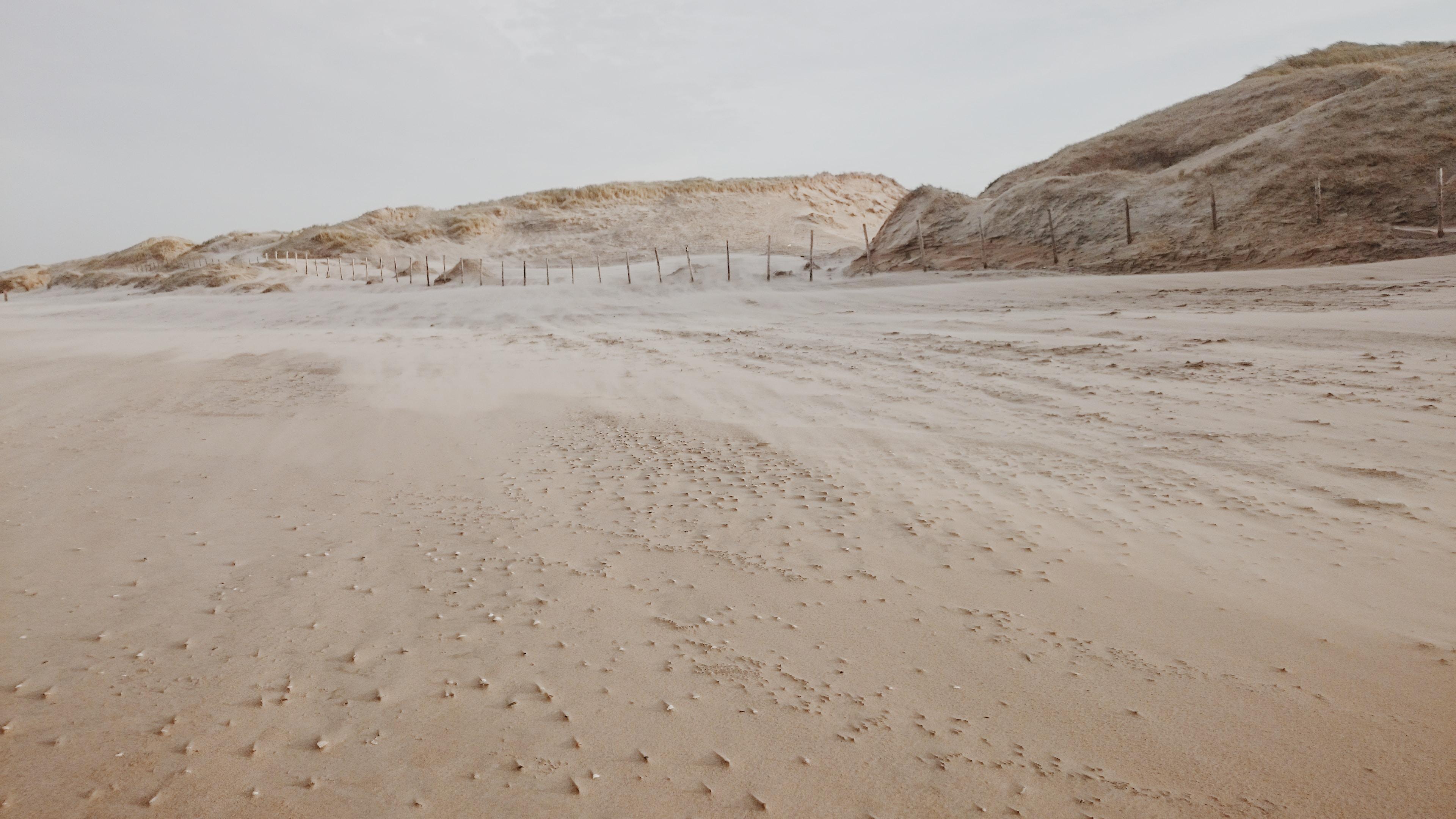 photo of desert dune