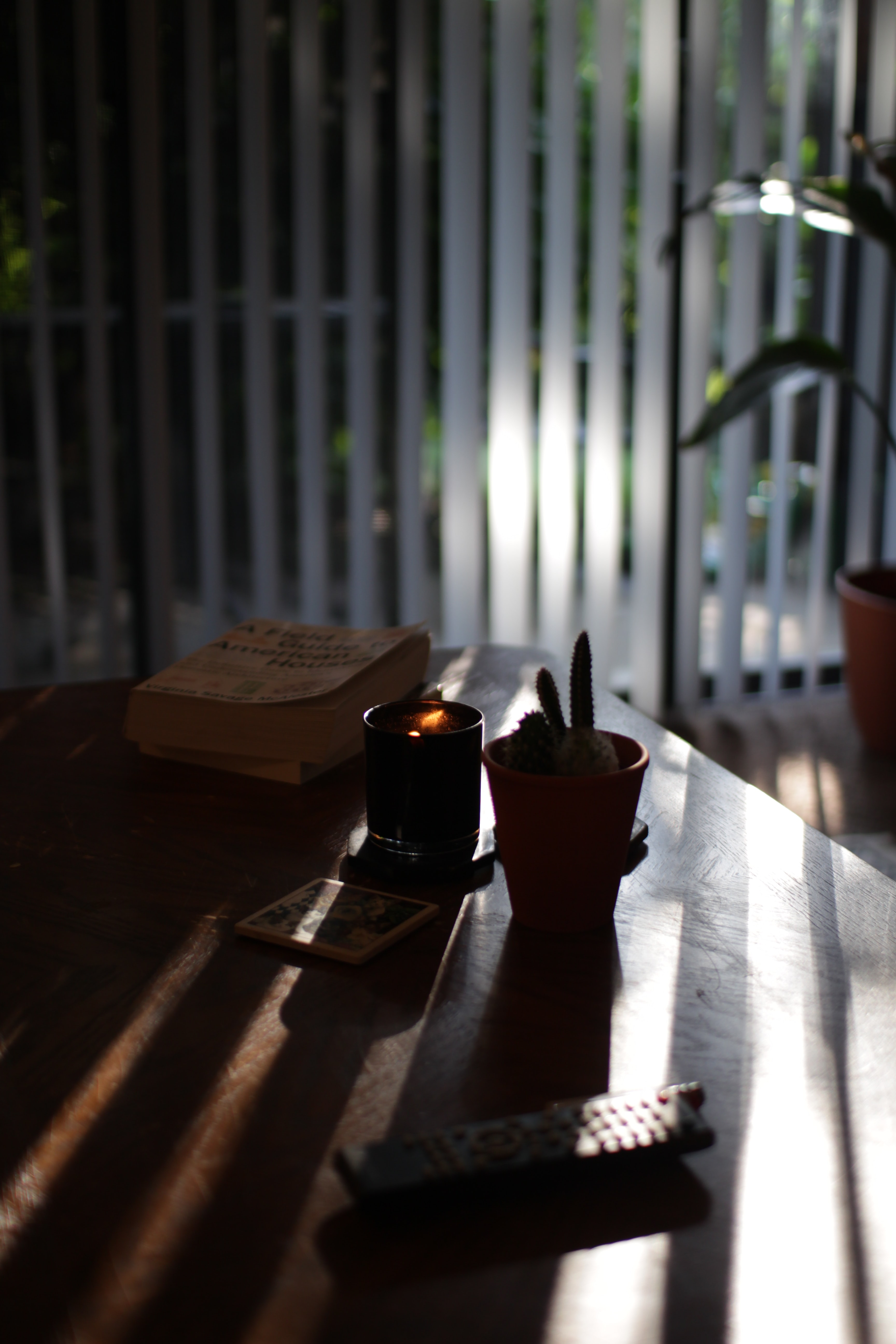 black votive candle on wood surface near cactus plant and book