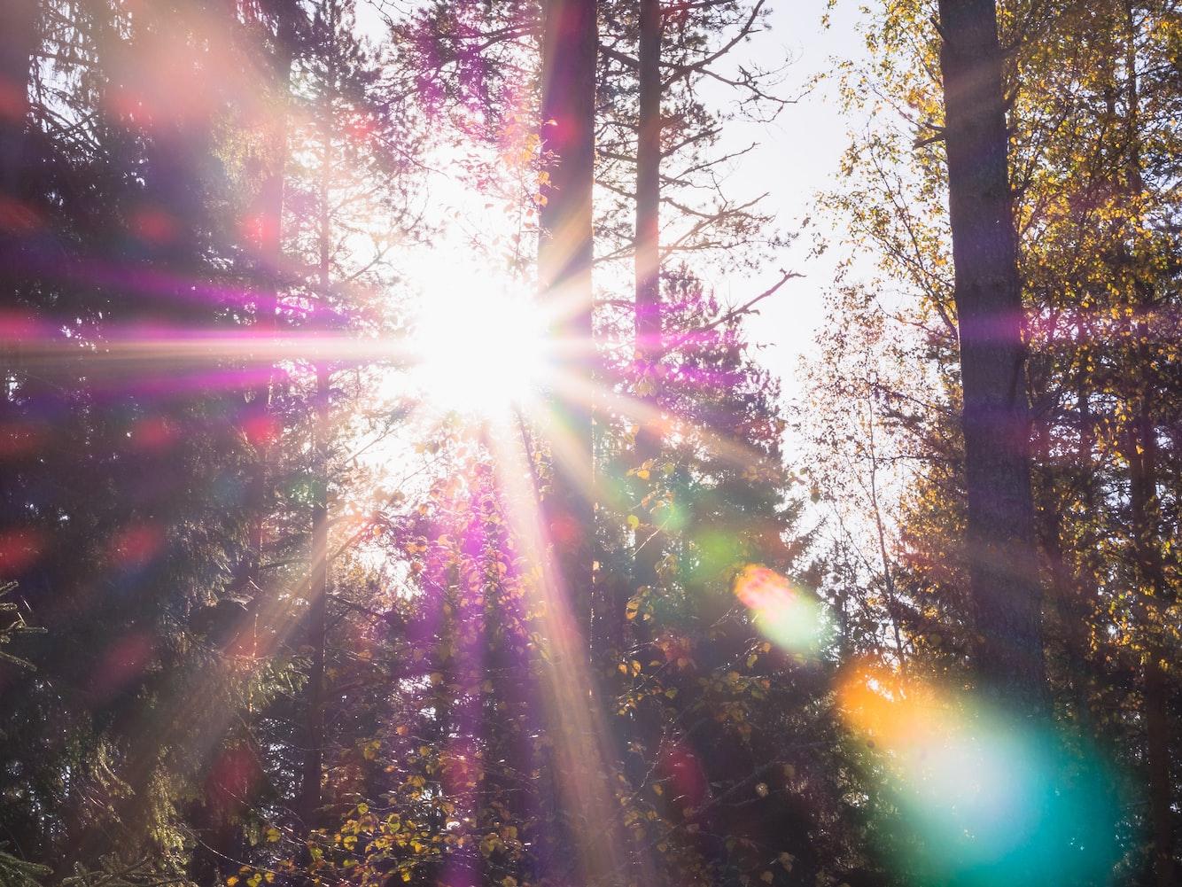 Aurinko, czyli słońce, jest często wymieniane przez adeptów fińskiego jako ich ulubione słówko.