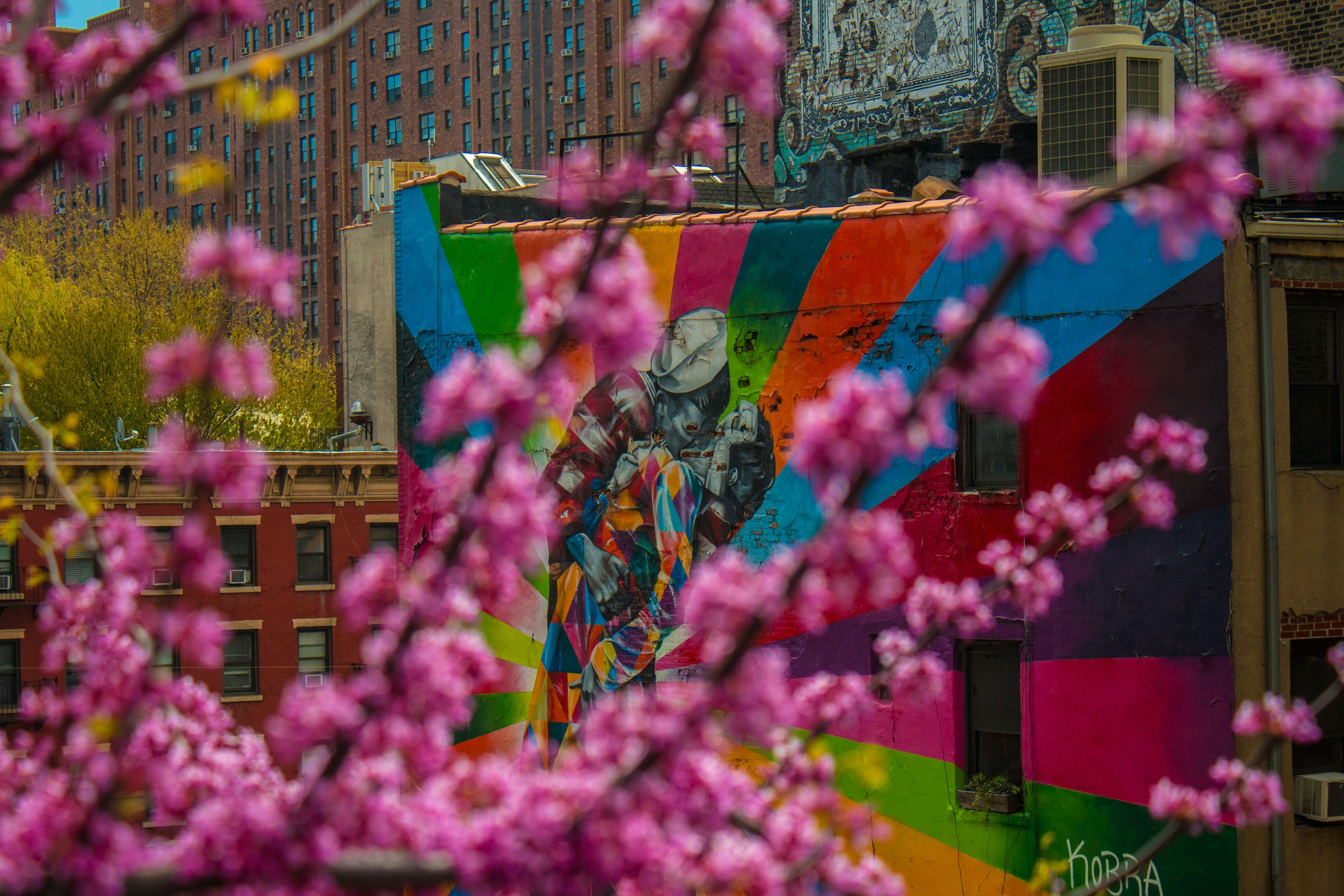 shallow focus photography of multicolored mural