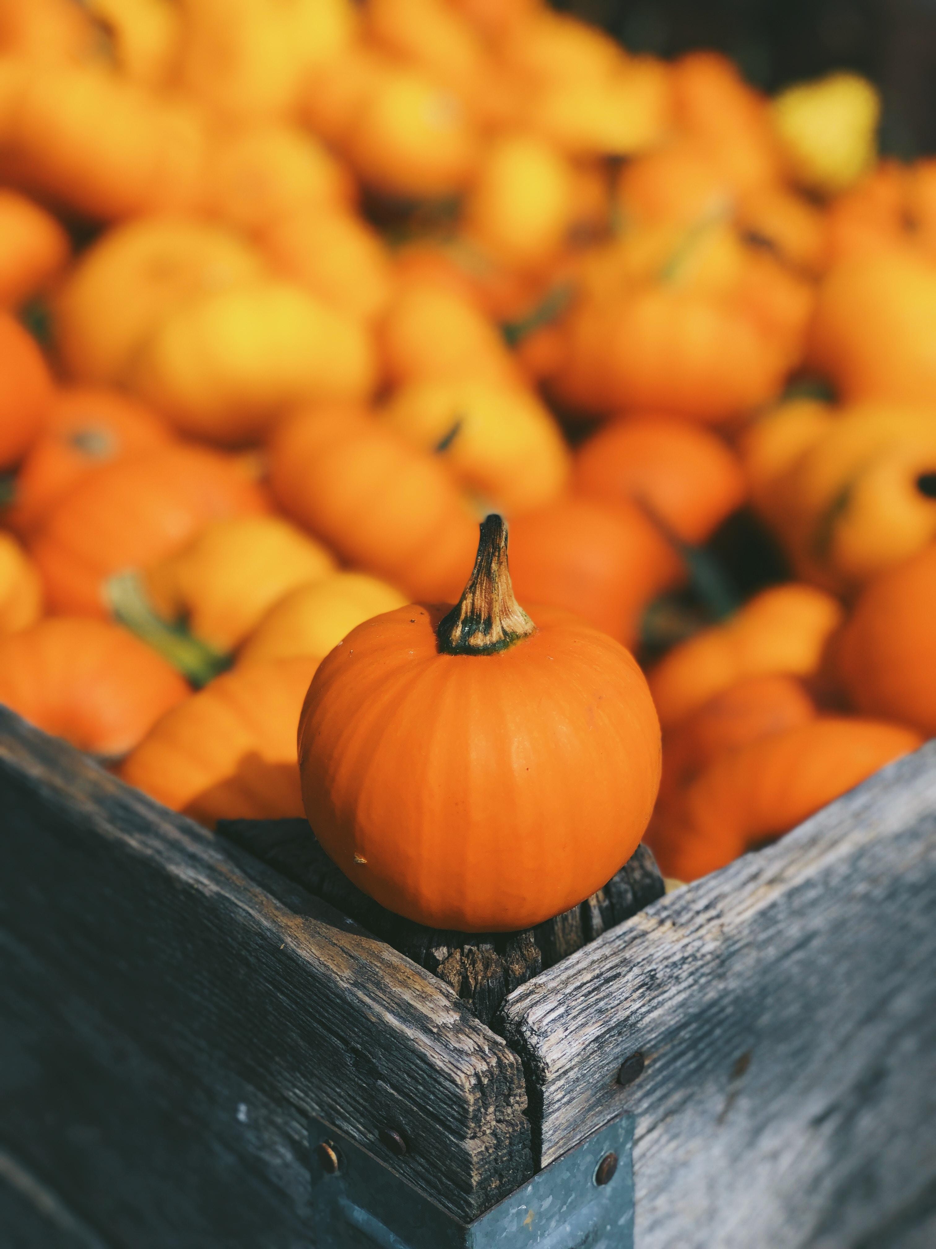 pumpkin on brown box
