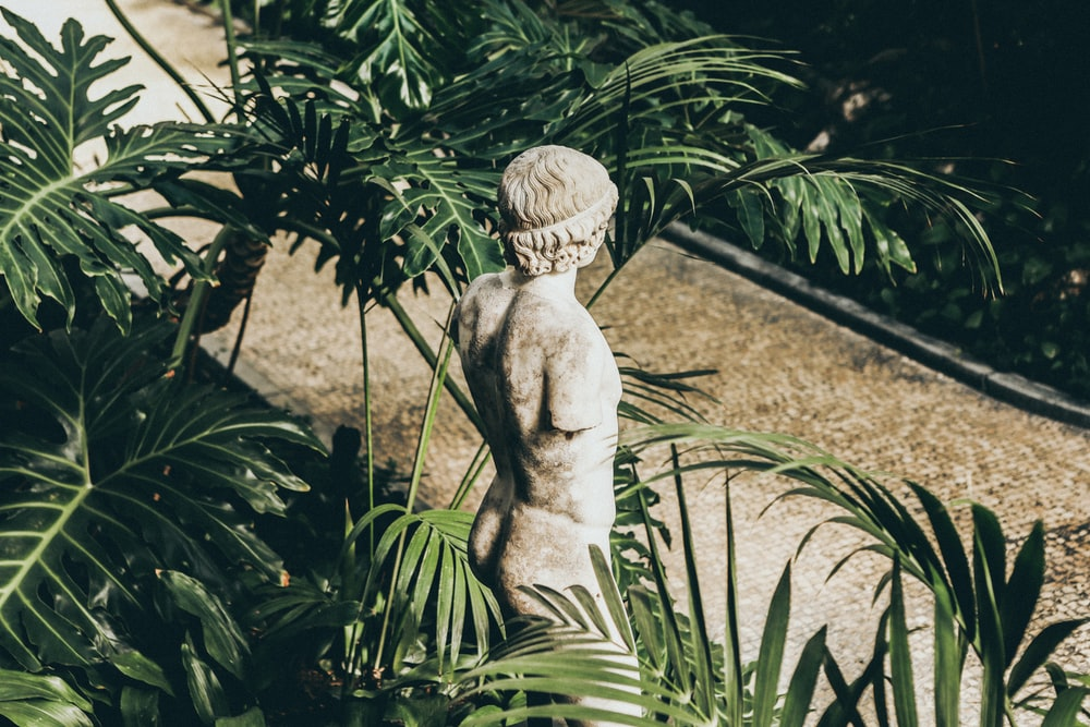 closeup photo of topless statue surrounded by plants