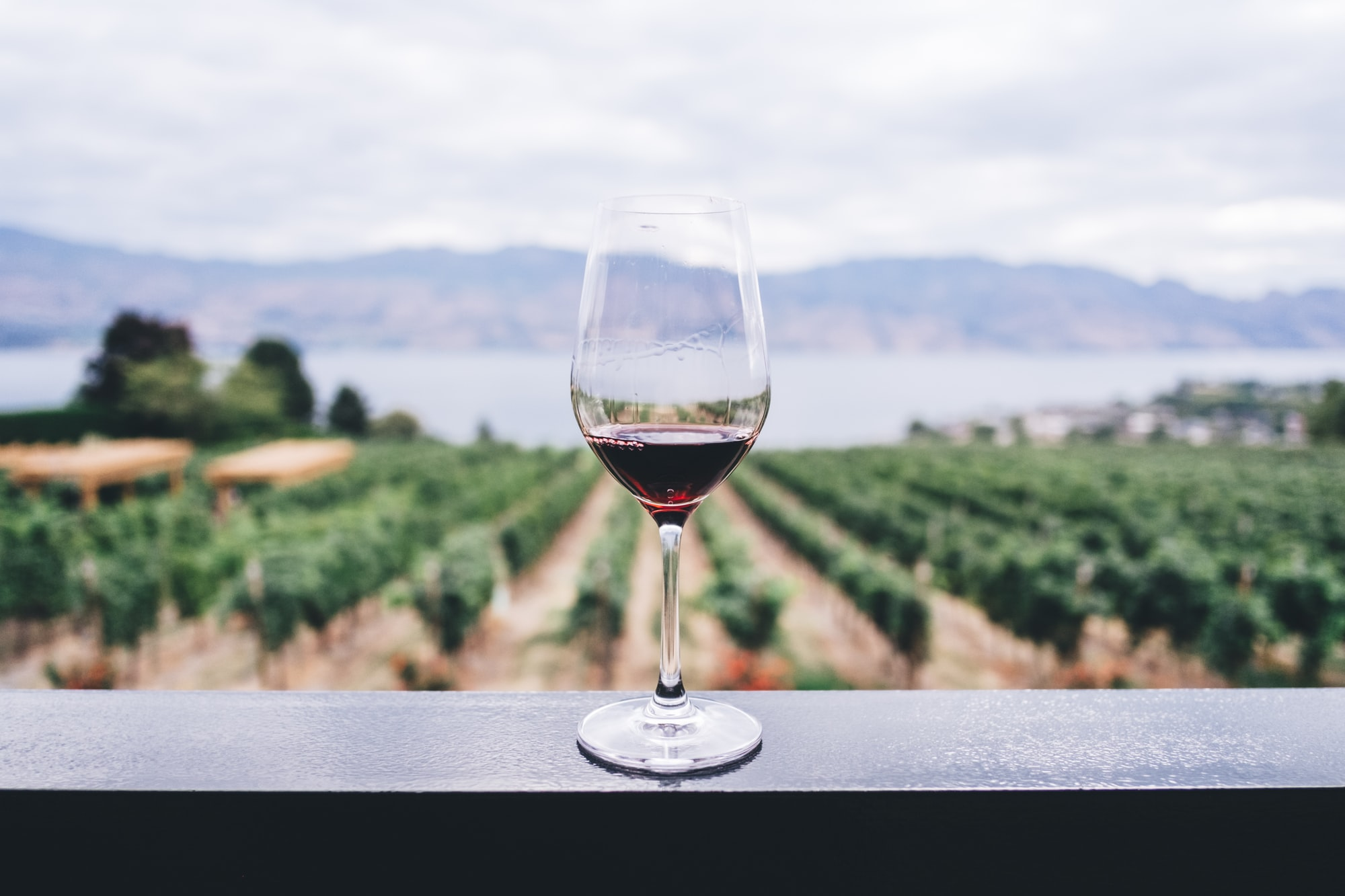A very educational (and tasty) weekend can be had if you explore the wine region of the Okanagen Valley in Canada.