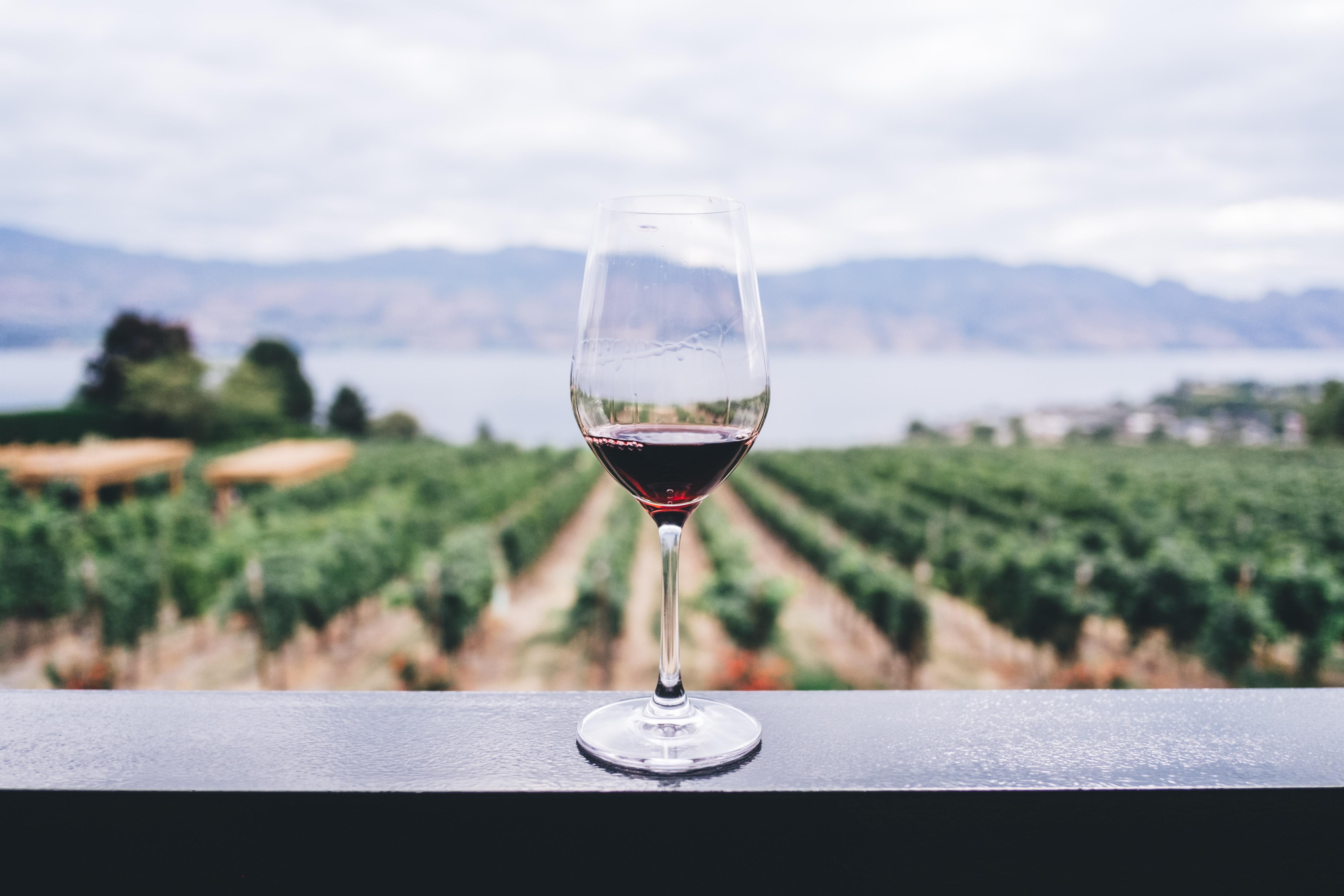 Data Mining: Wine Quality