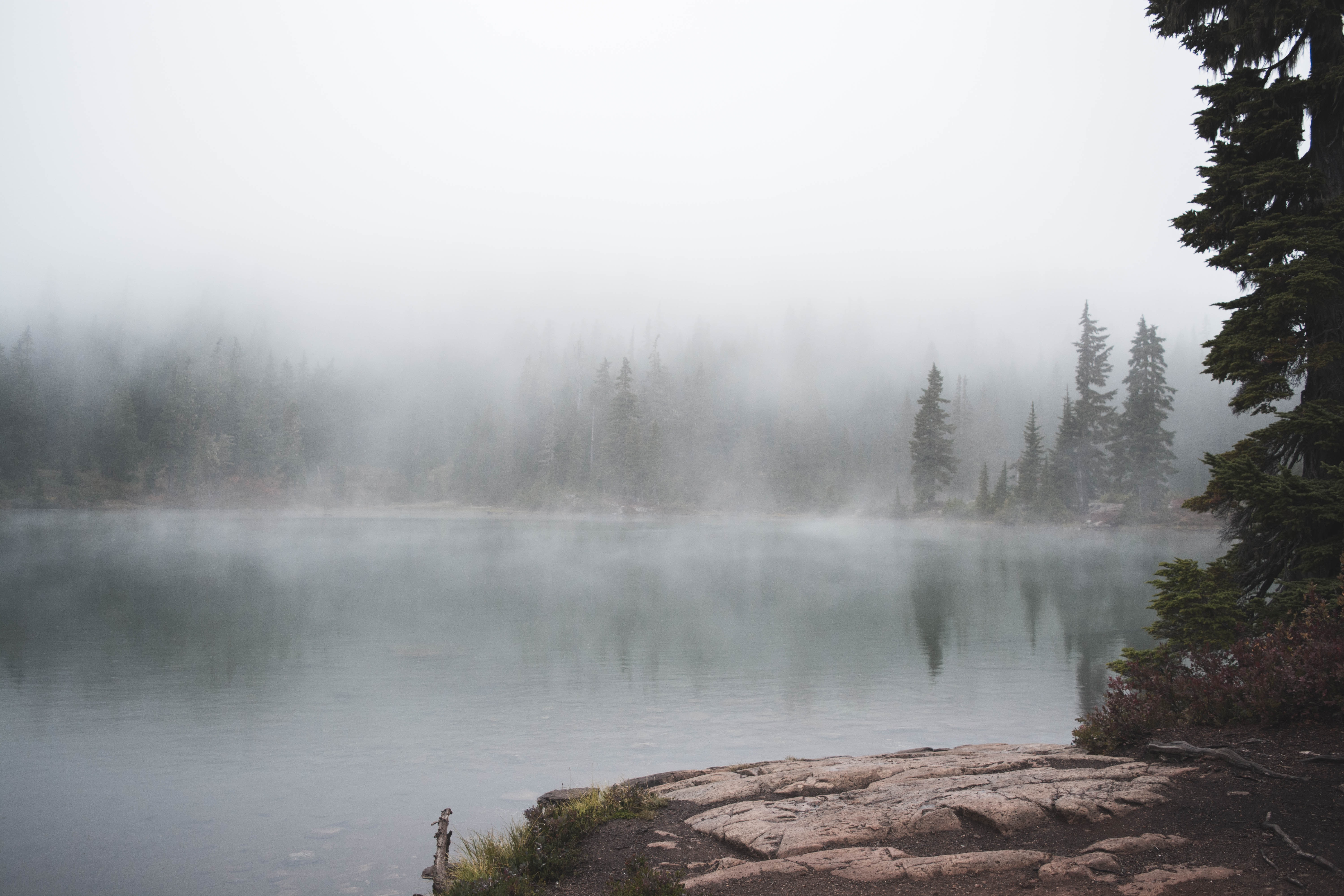 calm lake with mist during daytime