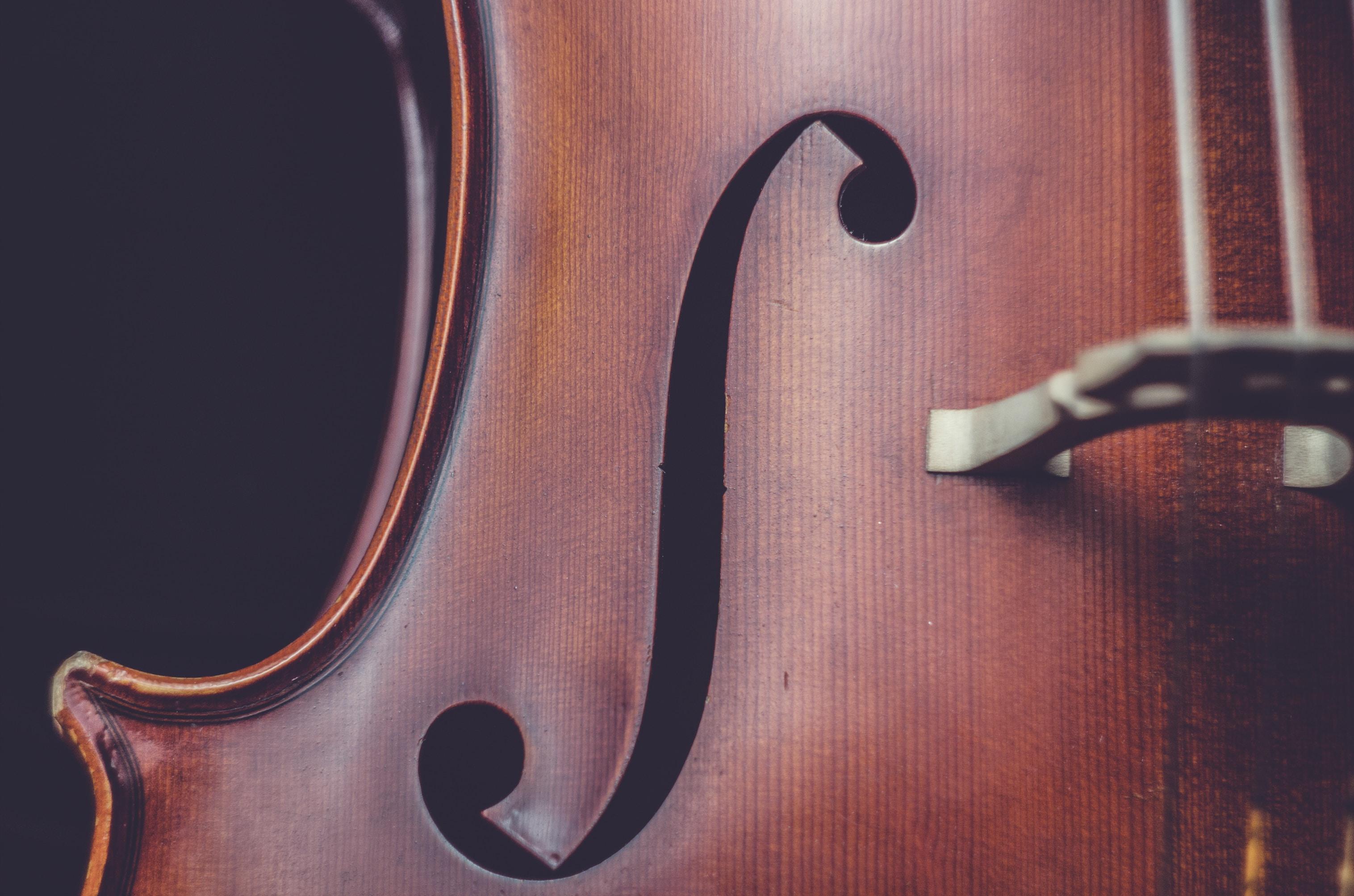 brown string instrument
