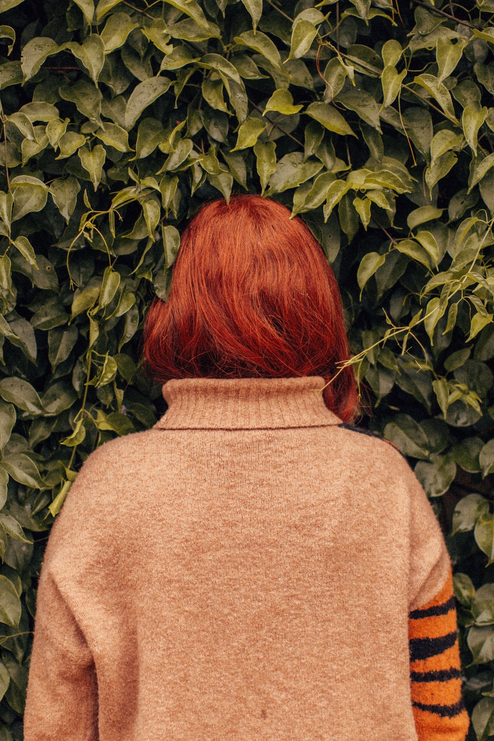 woman facing leafed plant