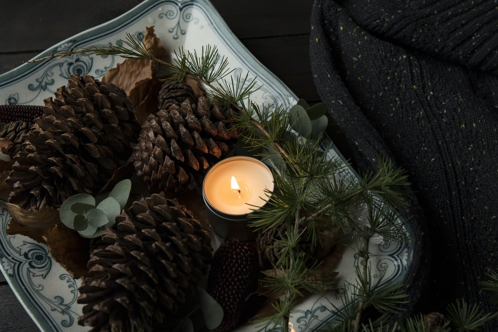 lighted candle on plate beside the pinecones