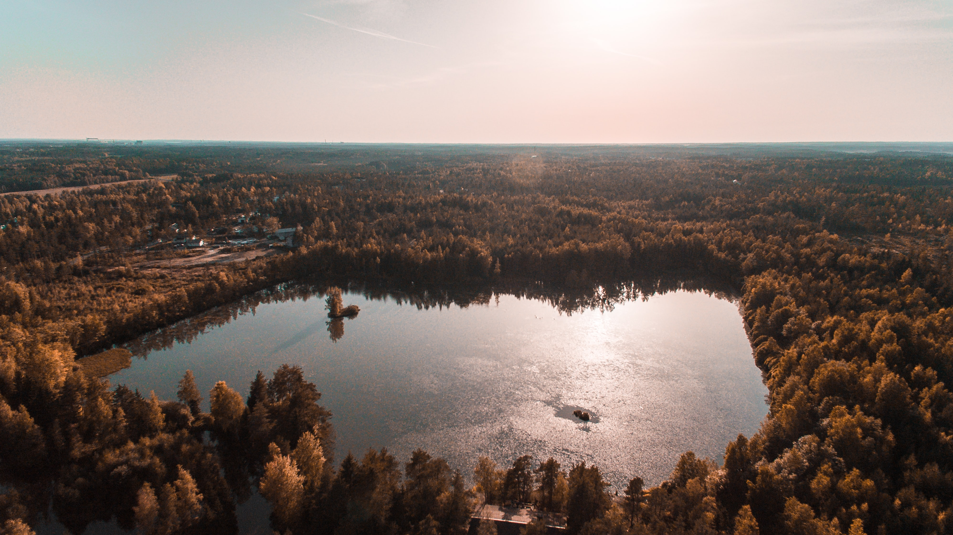 aerial view photography of calm water surrounded by trees