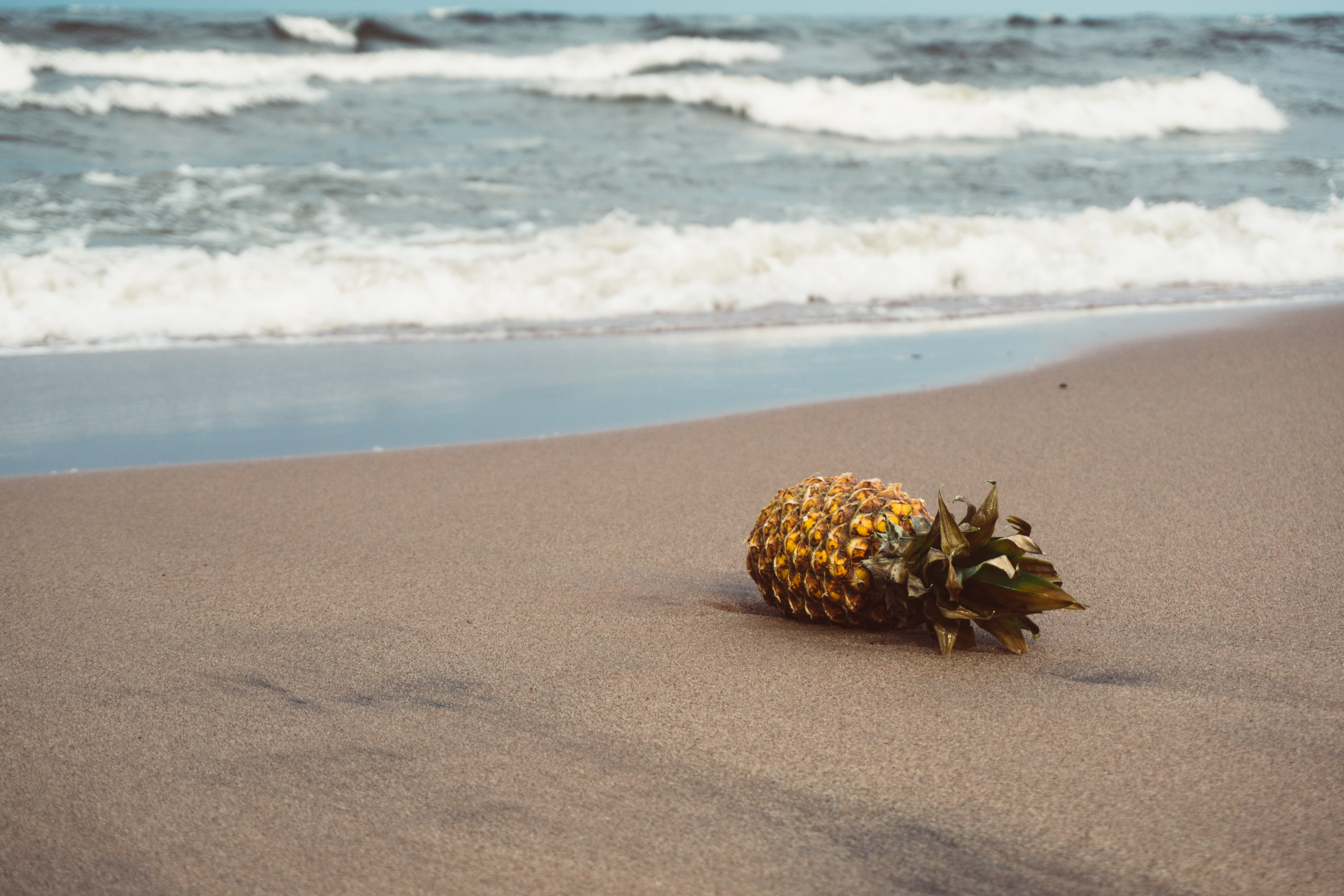 pineapple of sands