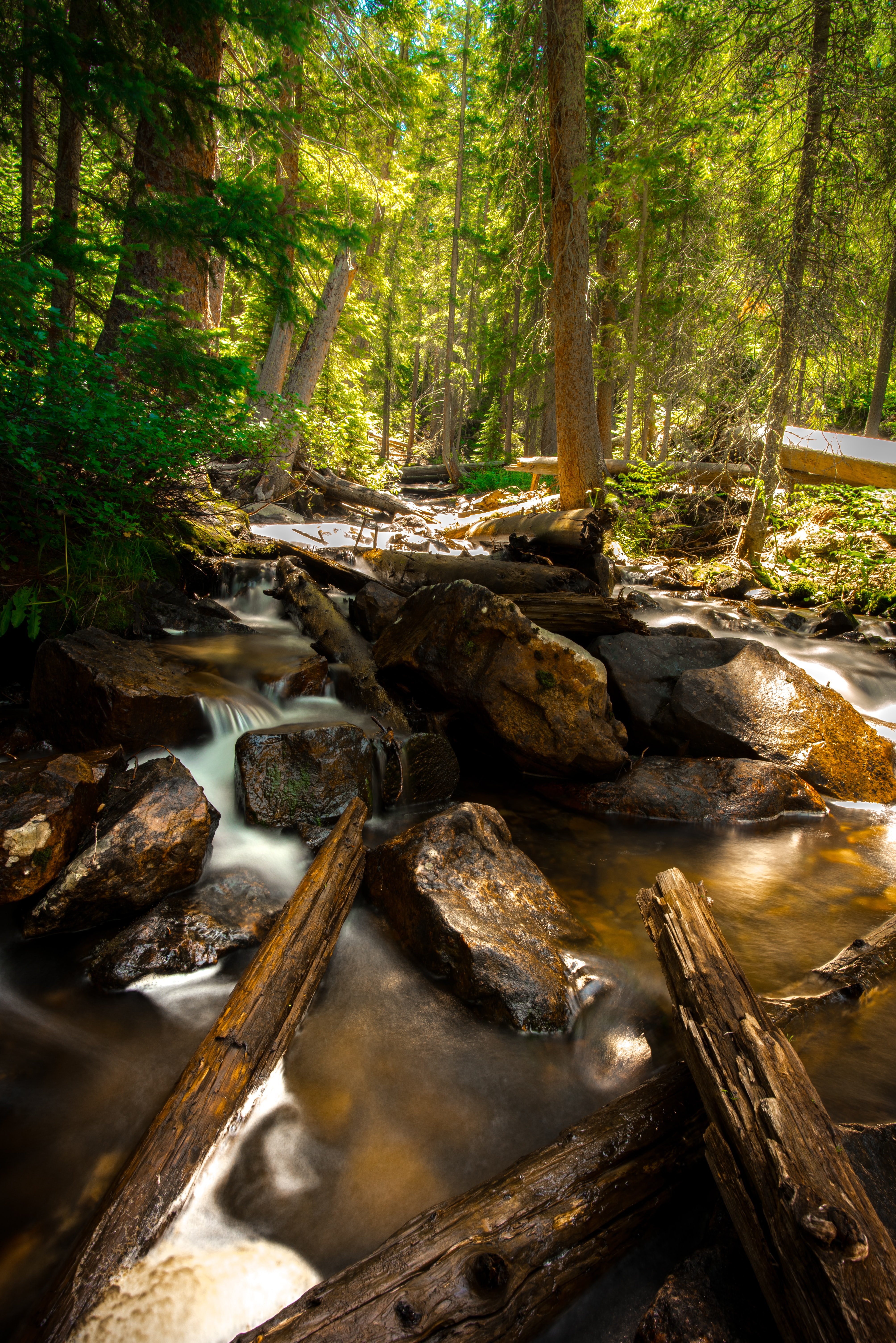 stream with large rocks and logs in the woods