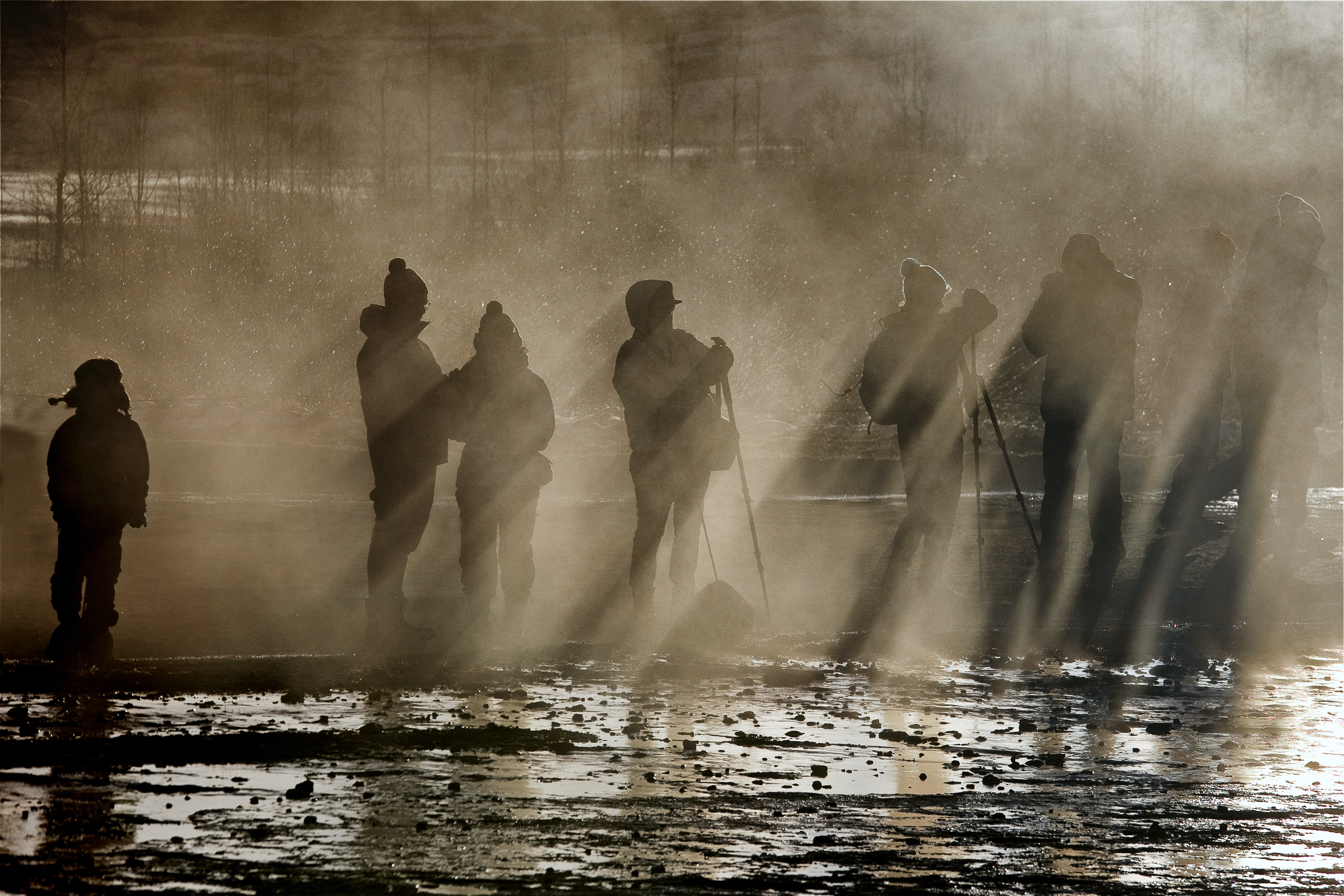 silhouette of people standing beside the body of water