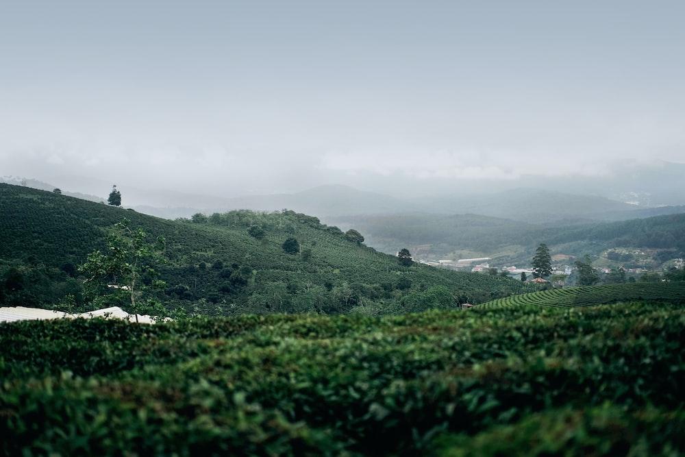 landscape photography of hills under foggy sky