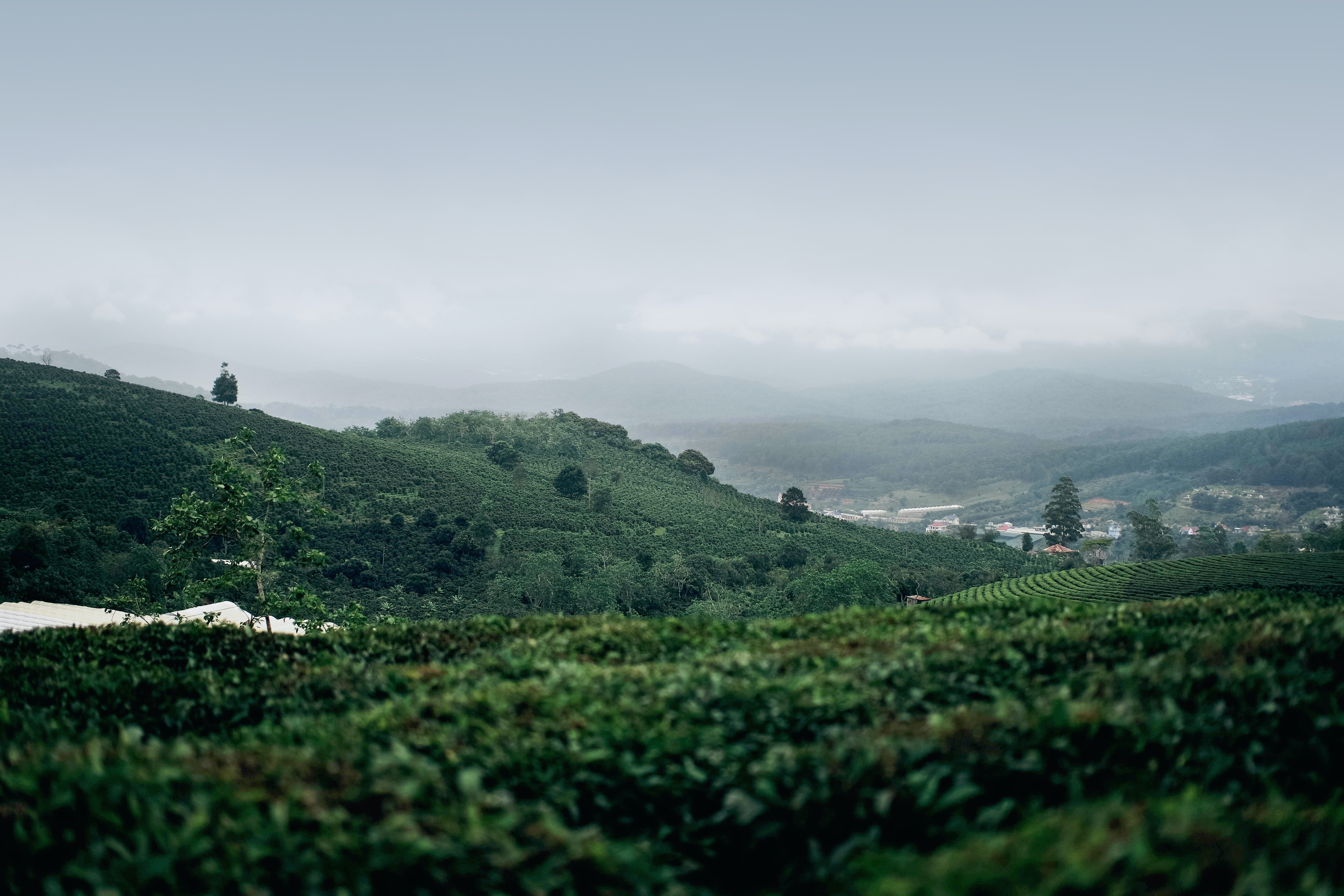 landscape photography of hills under foggy sky