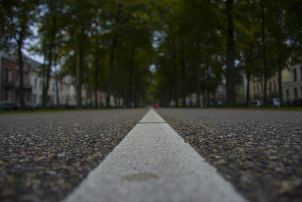 worms's-eye view photography of asphalt road between green trees