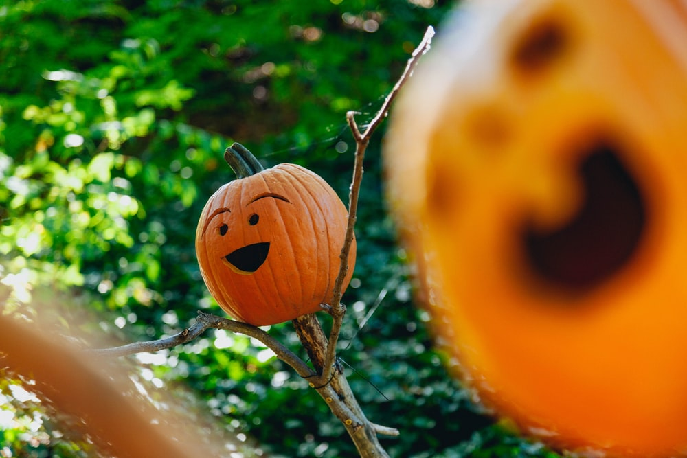 shallow focus photography of jack-o'-lantern