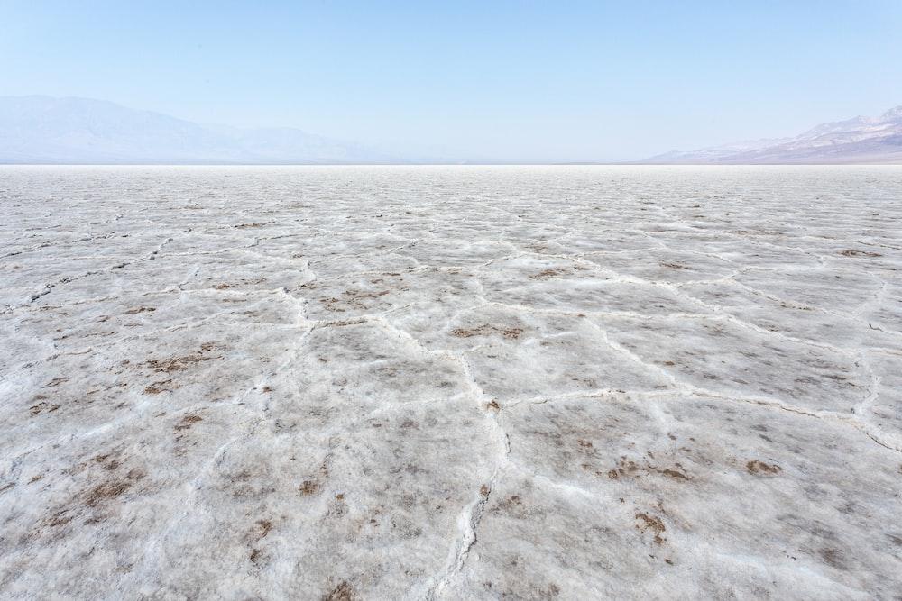 closeup photo of snow coated ground