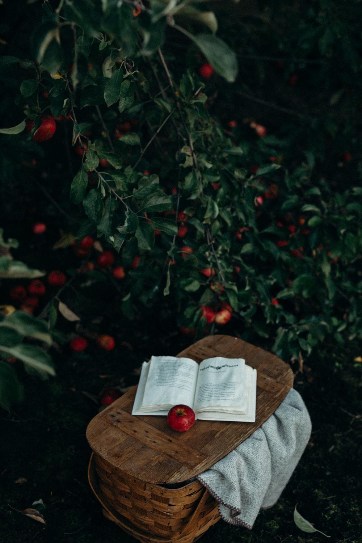 round red fruits