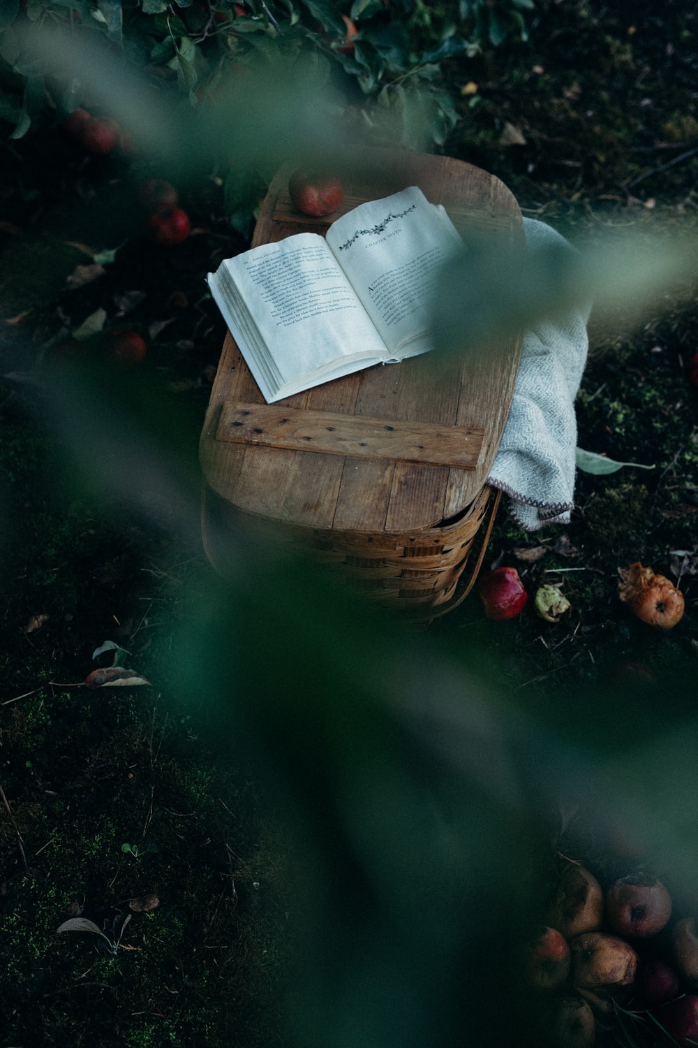 photo of opened book on top of brown basket