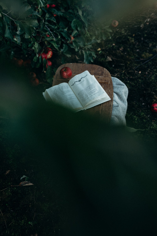 apple on brown board beside book