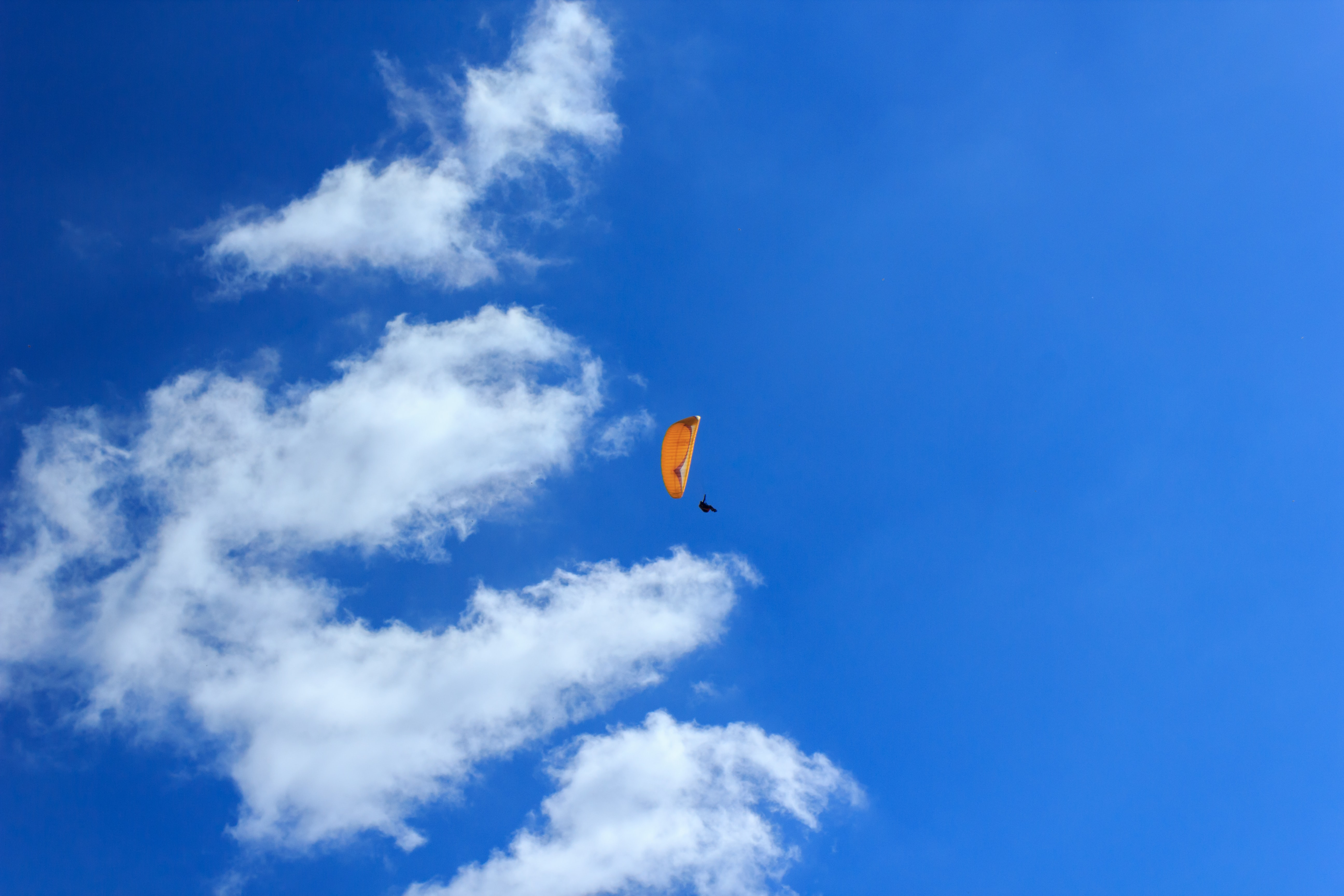 person using parachute during daytime