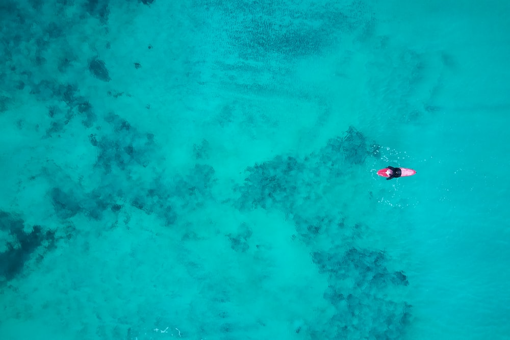 bird's eye view photography of person on body of water