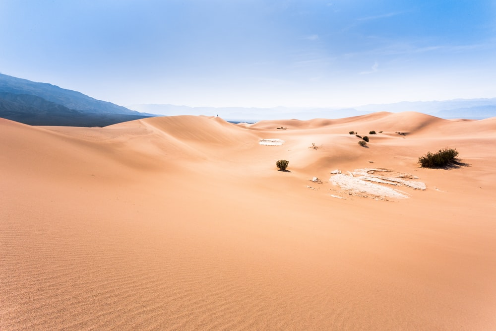 photo of desert dune