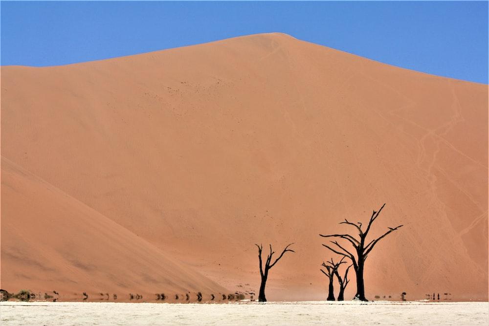 Karte Namibia Download.Sossusvlei Namibia Pictures Download Free Images On Unsplash