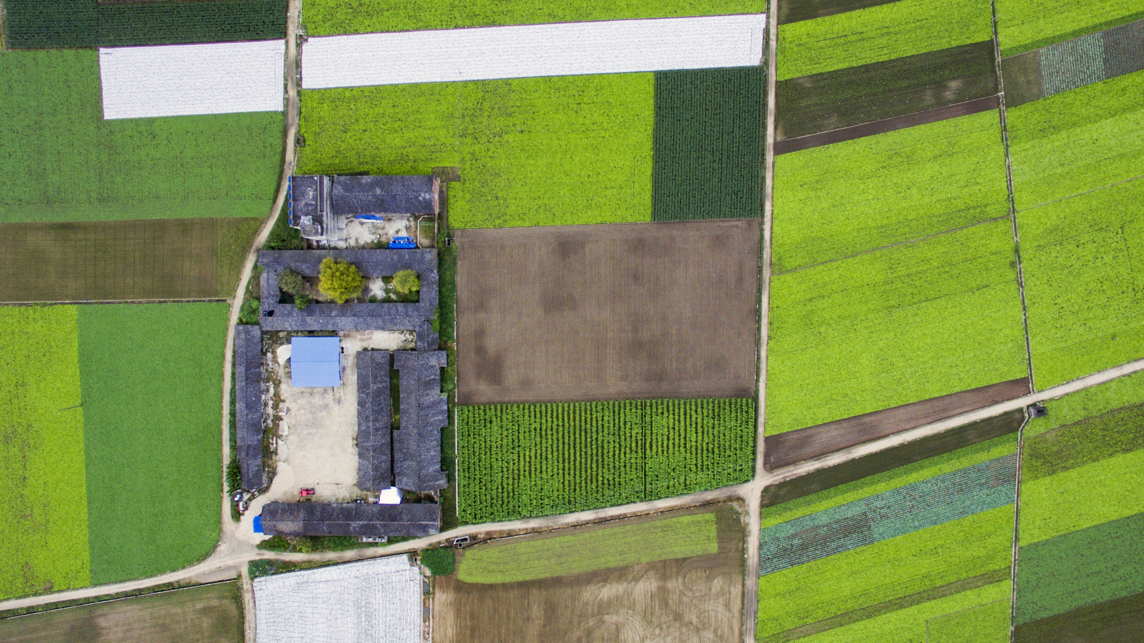 aerial photography of a village surrounded with crop field