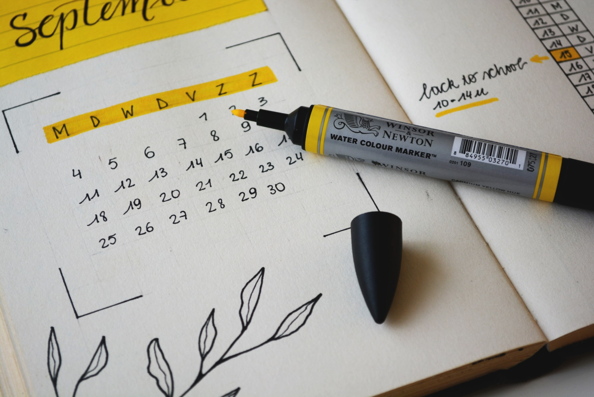 Back to school with a bullet journal
