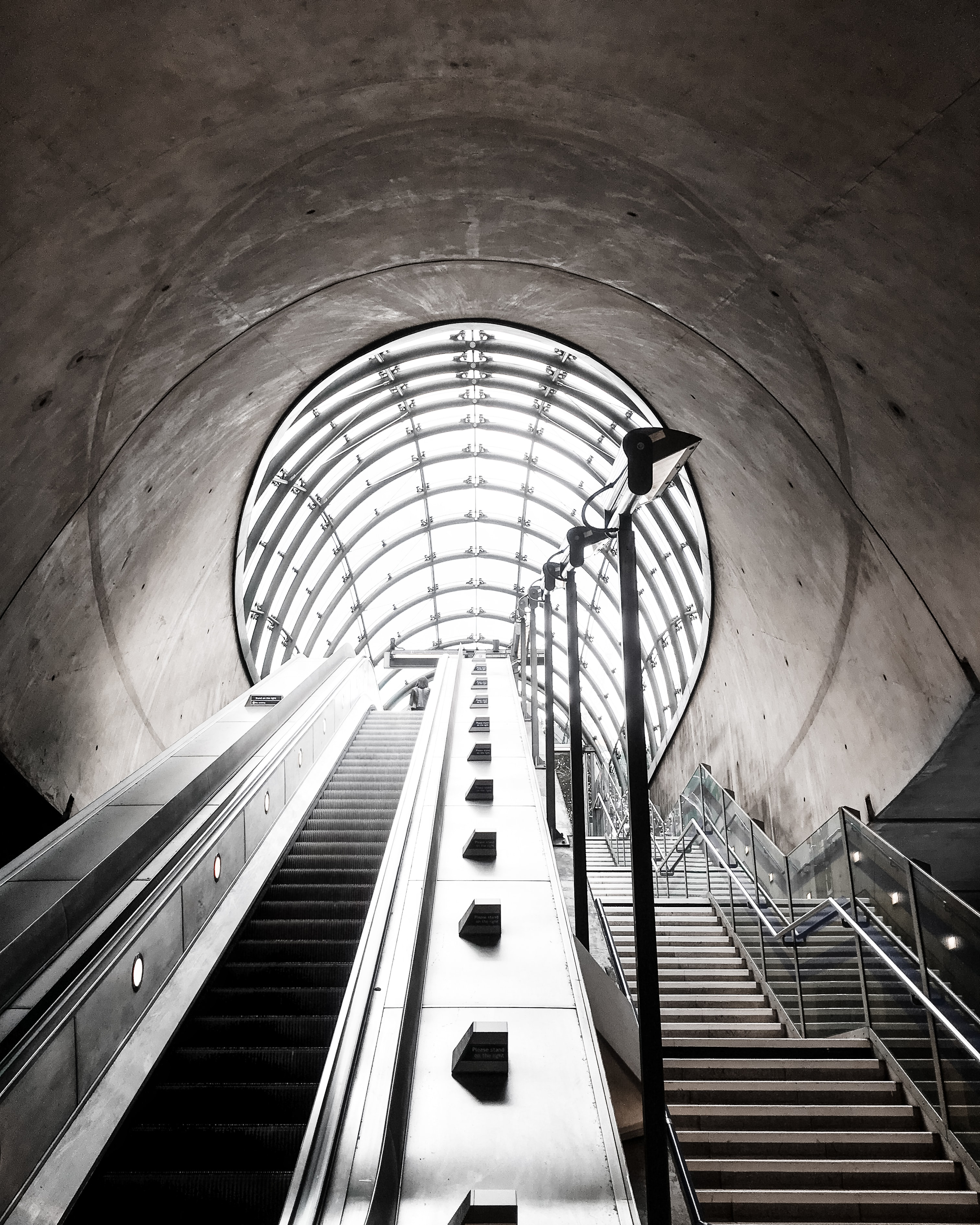 architectural photography of stairs beside escalator