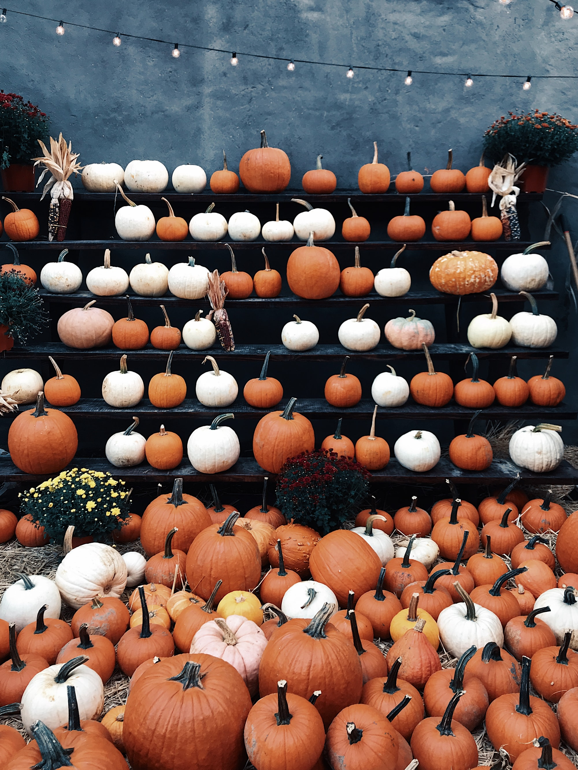 Fall Festivities for your Community