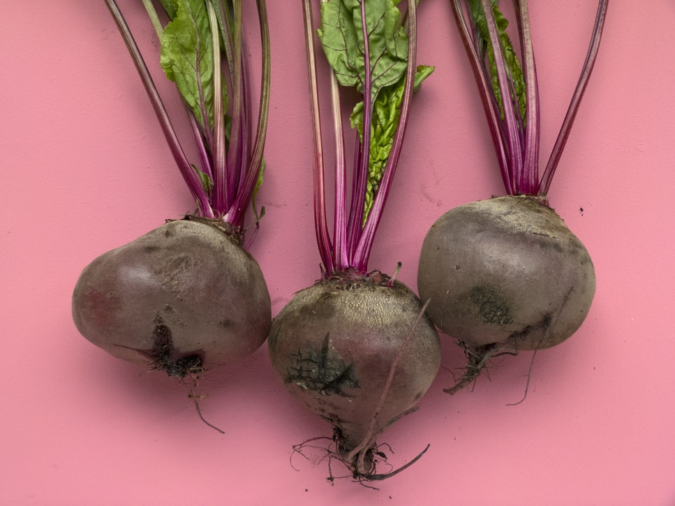 How To Grow Beets | Winter Vegetables Perfect For Growing In The Cold Season