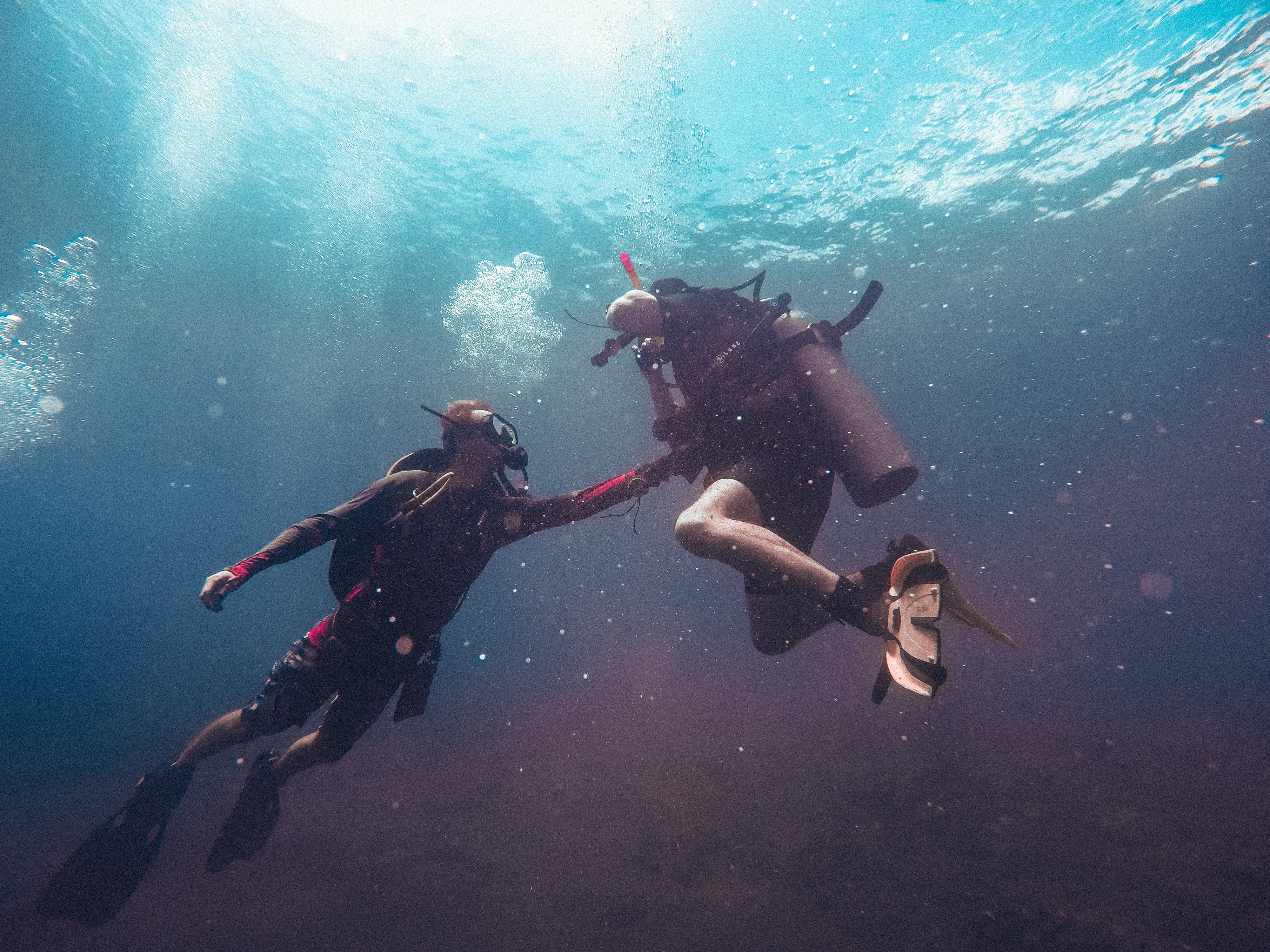 two person swimming underwater