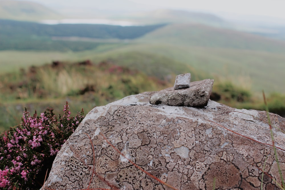brown stone fragment on brown rock