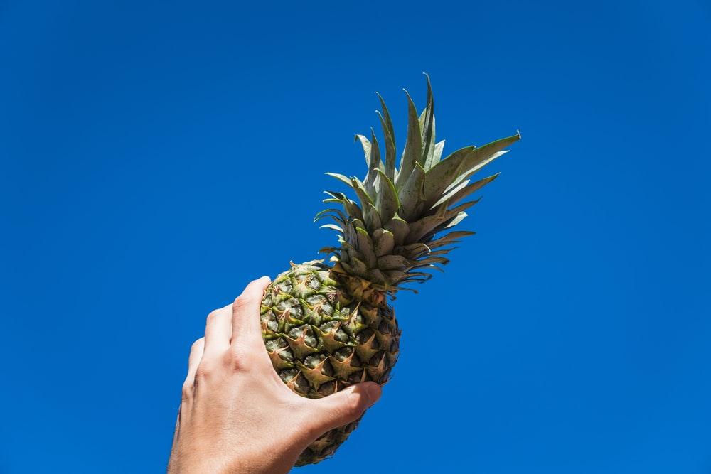 person holding pineapple fruit under blue sky during daytime