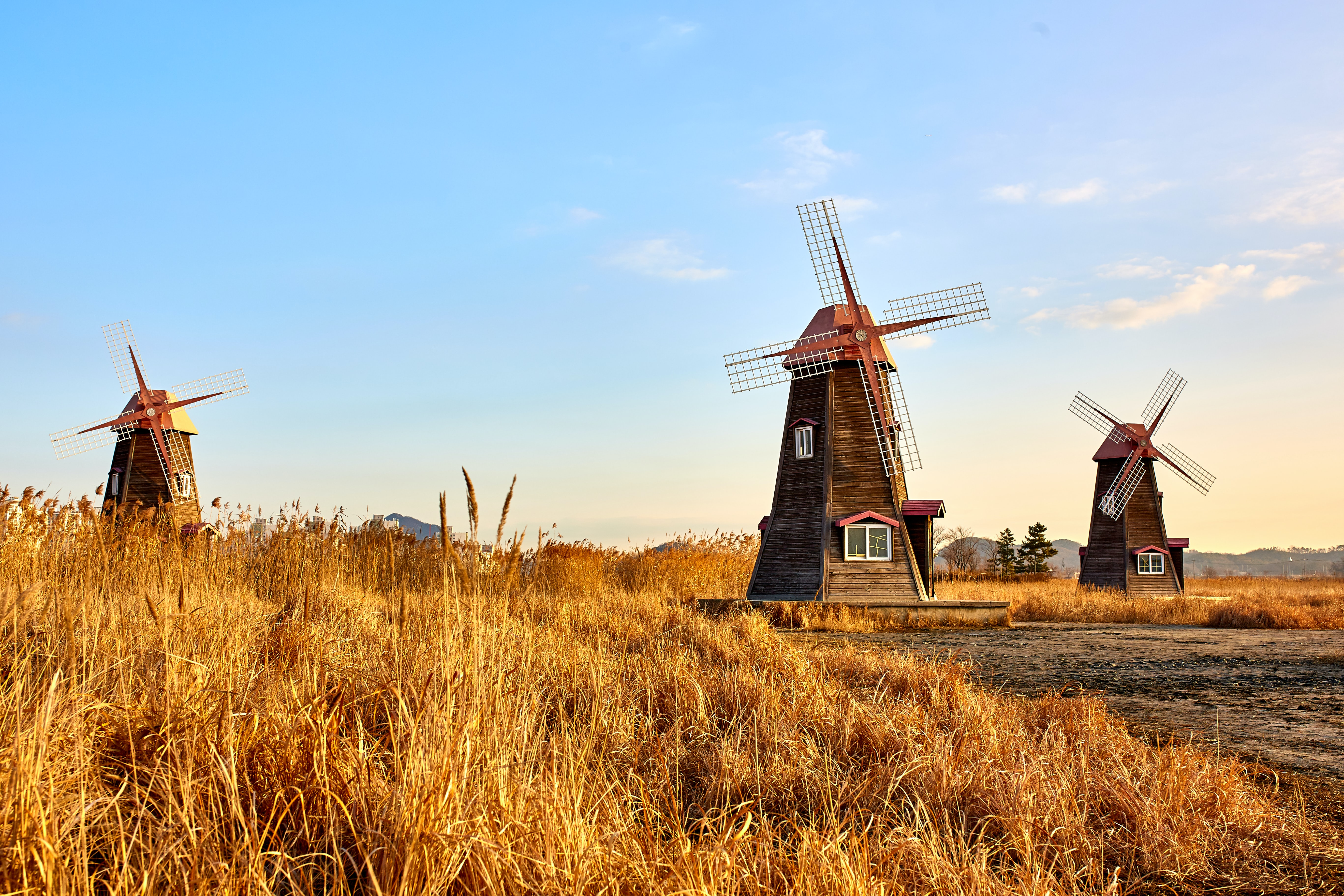 three brown windmill on crop field