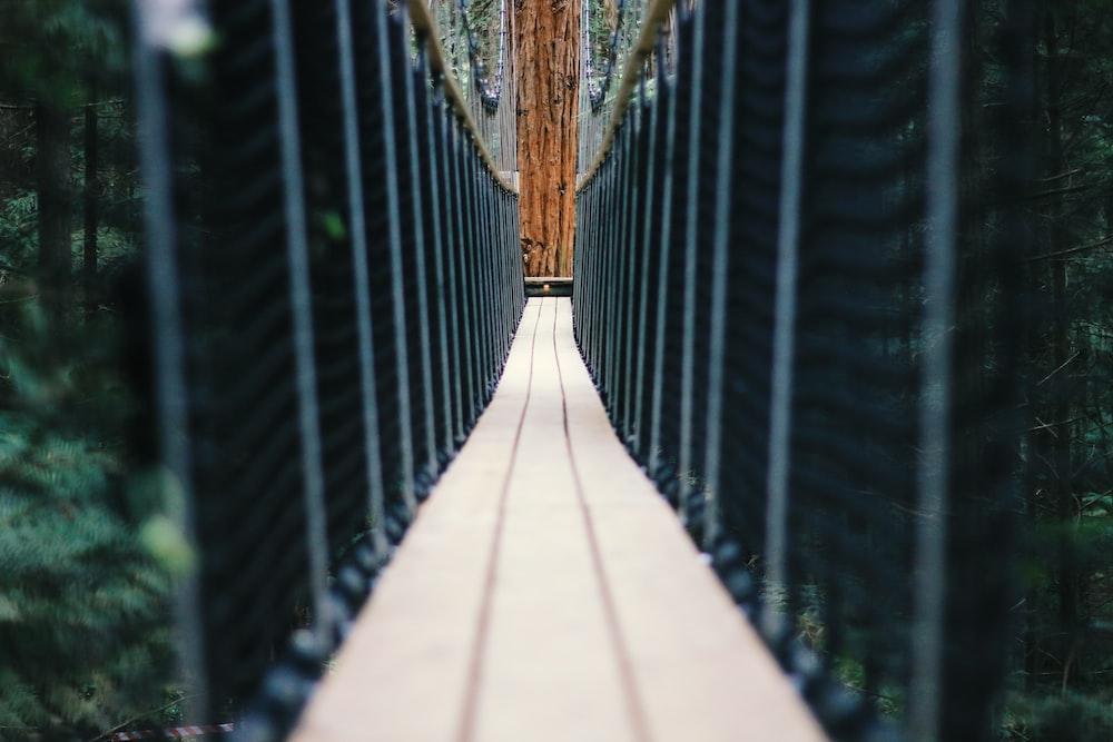 brown and black hanging bridge