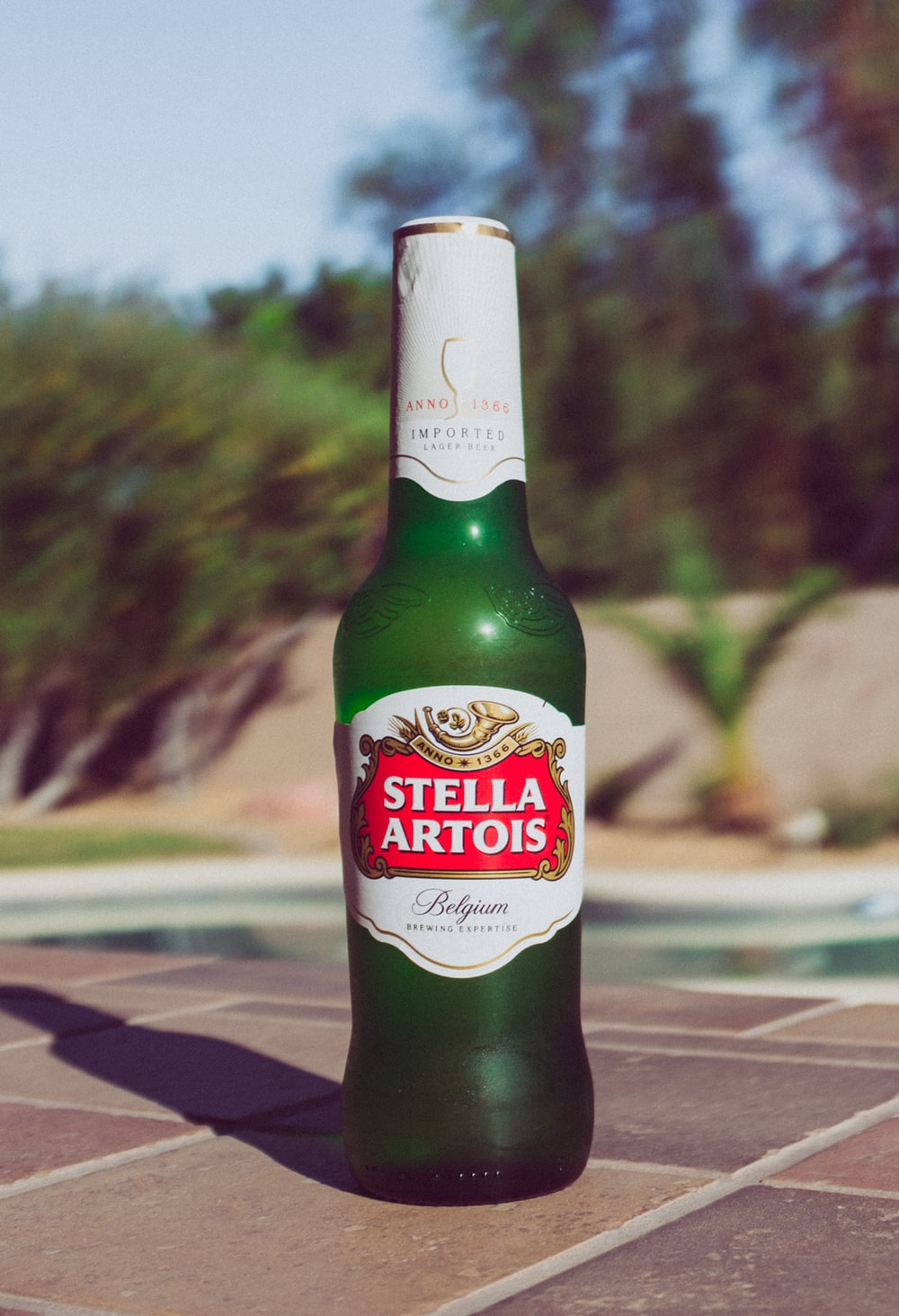 selective focus photography of Stella Artois bottle on beside pool