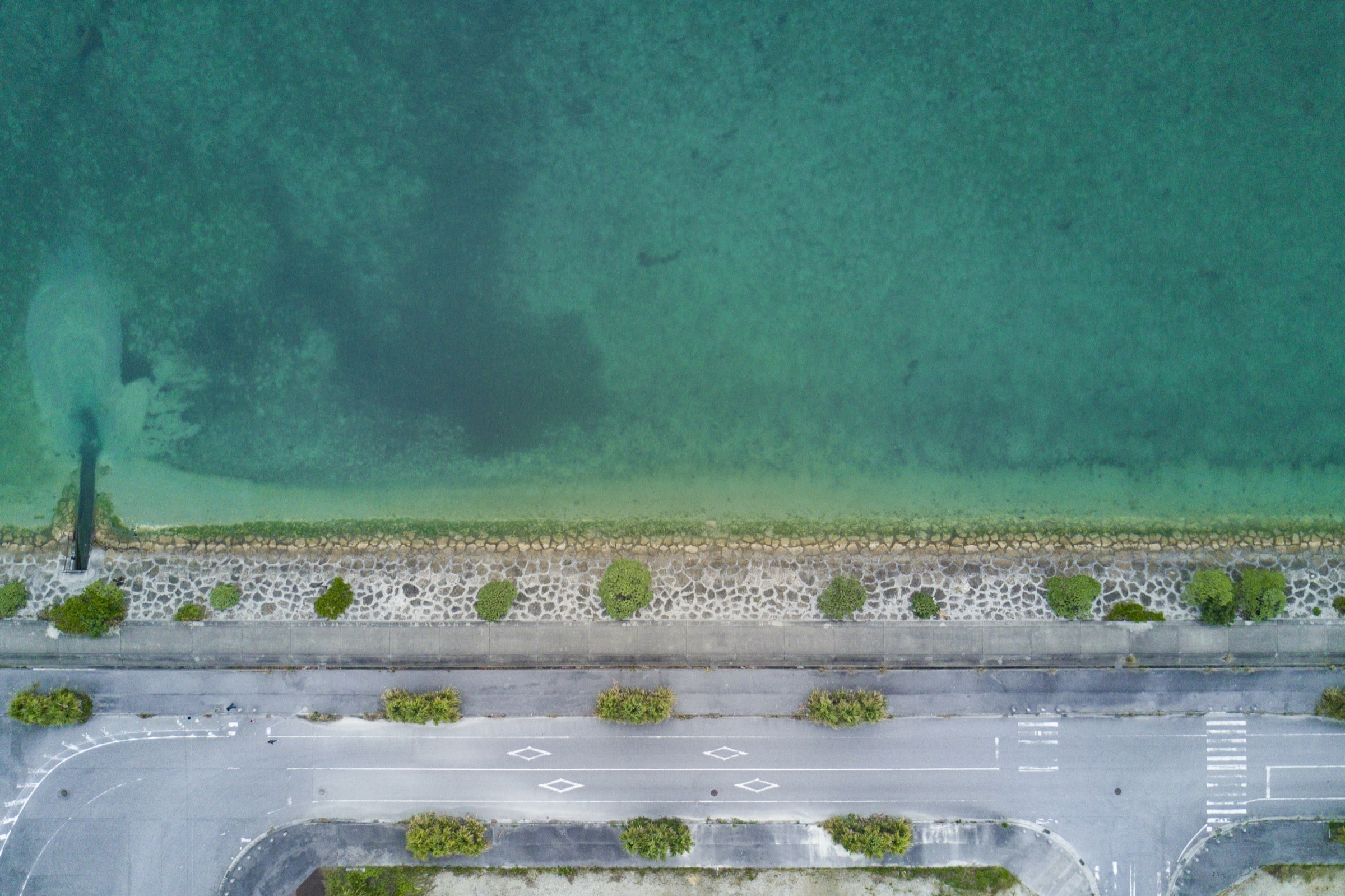 bird's photography of road near body of water