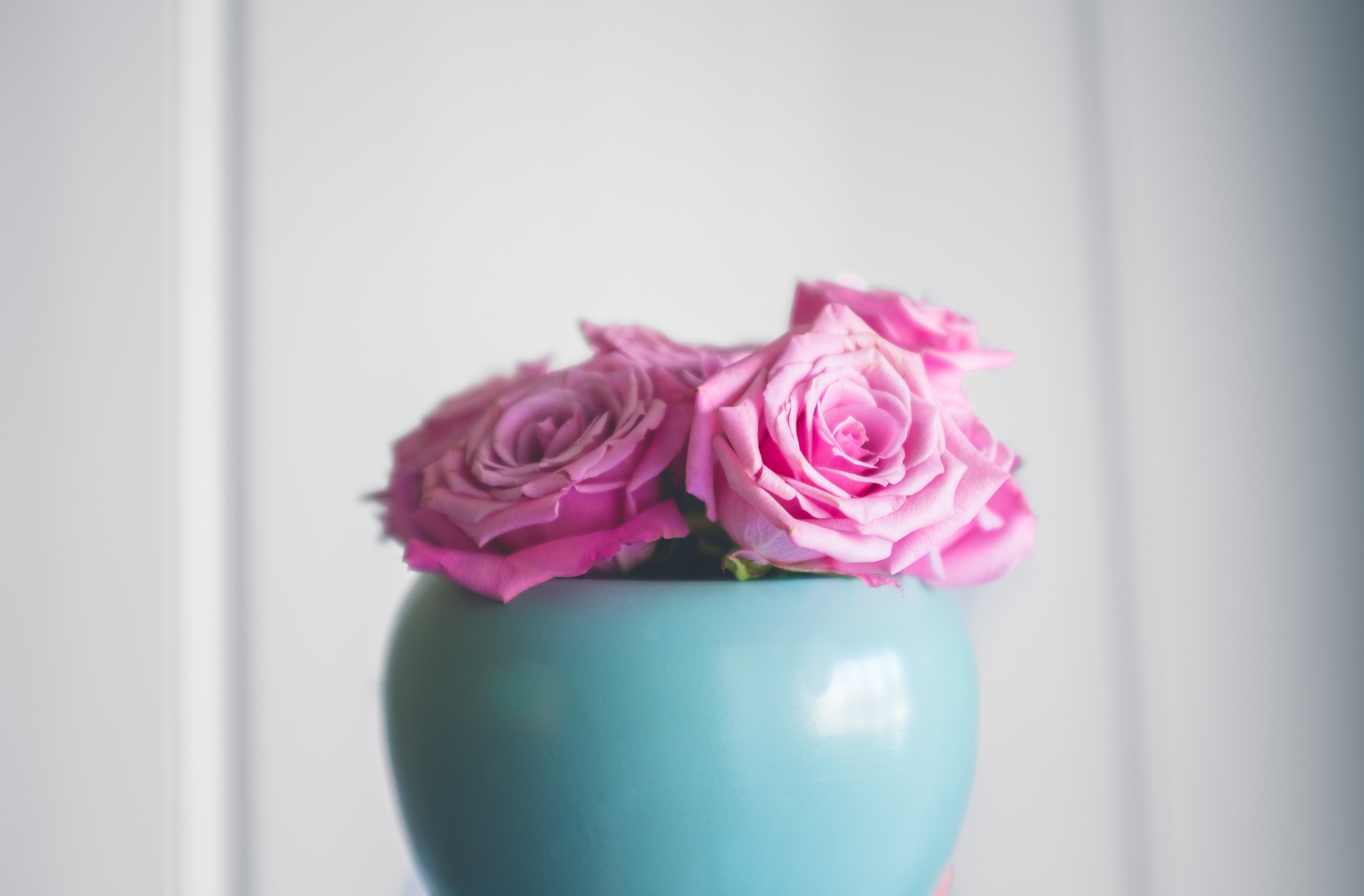pink roses on teal ceramic vase