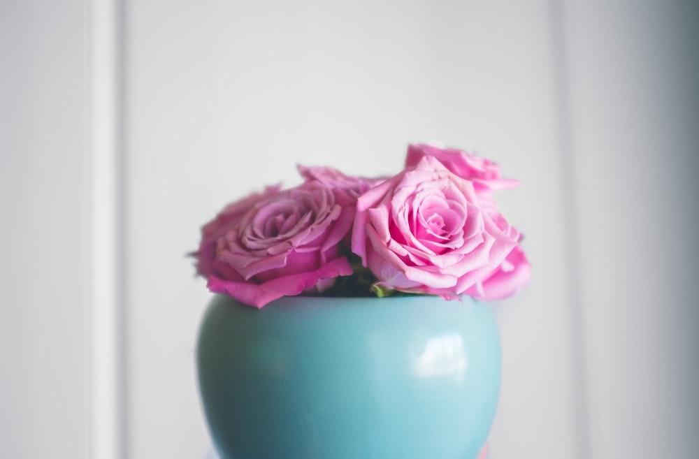 pink roses on teal ceramic vase