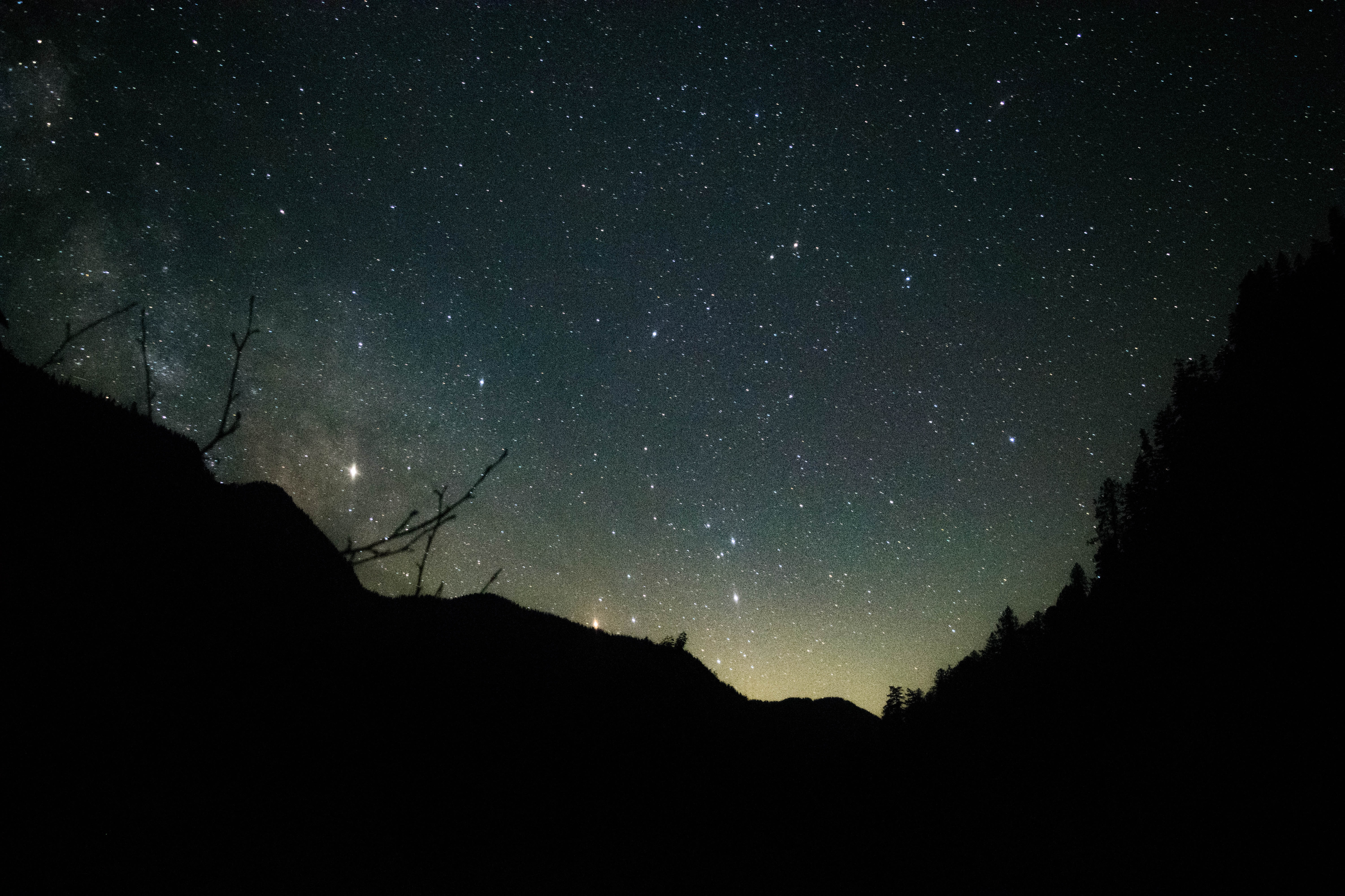silhouette of trees and mountain undre green and blue starry night sky