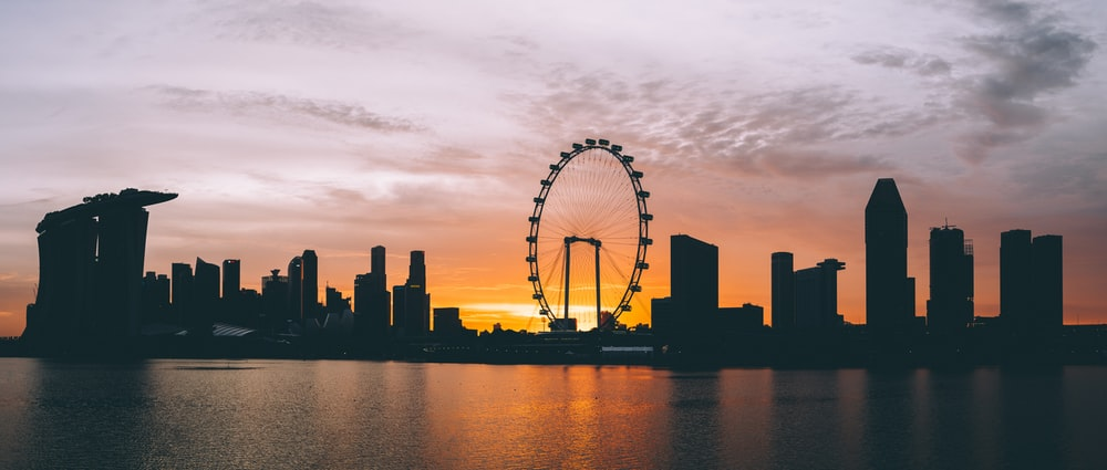 silhouette photography of Ferris wheel and high-rise buildings