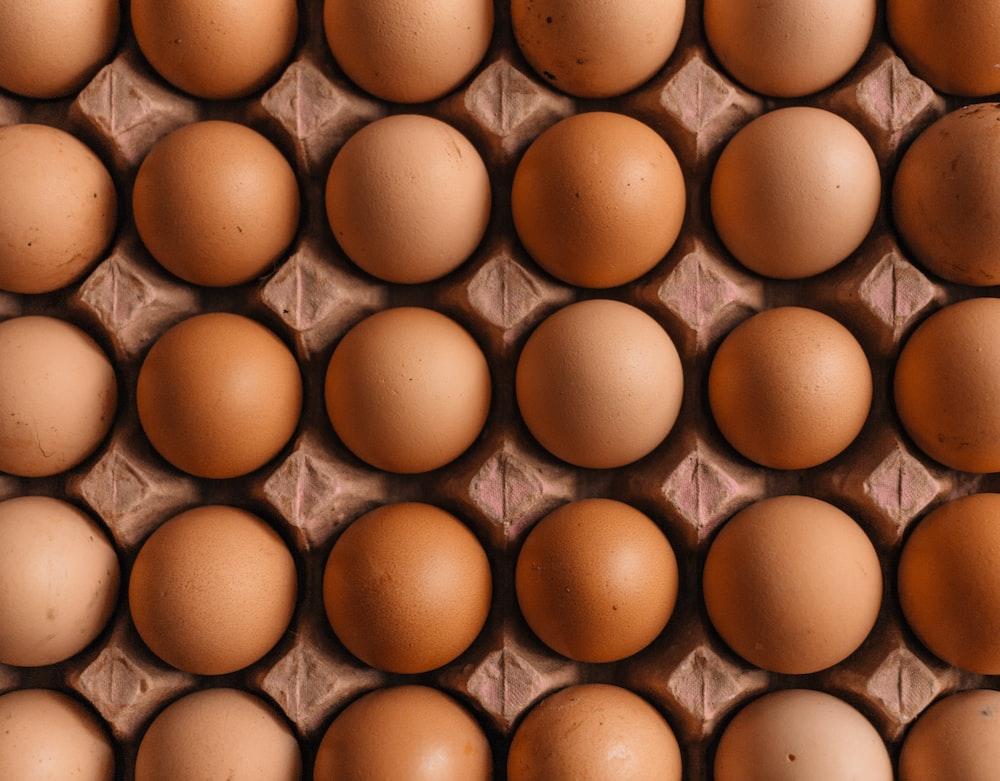 native egg lot
