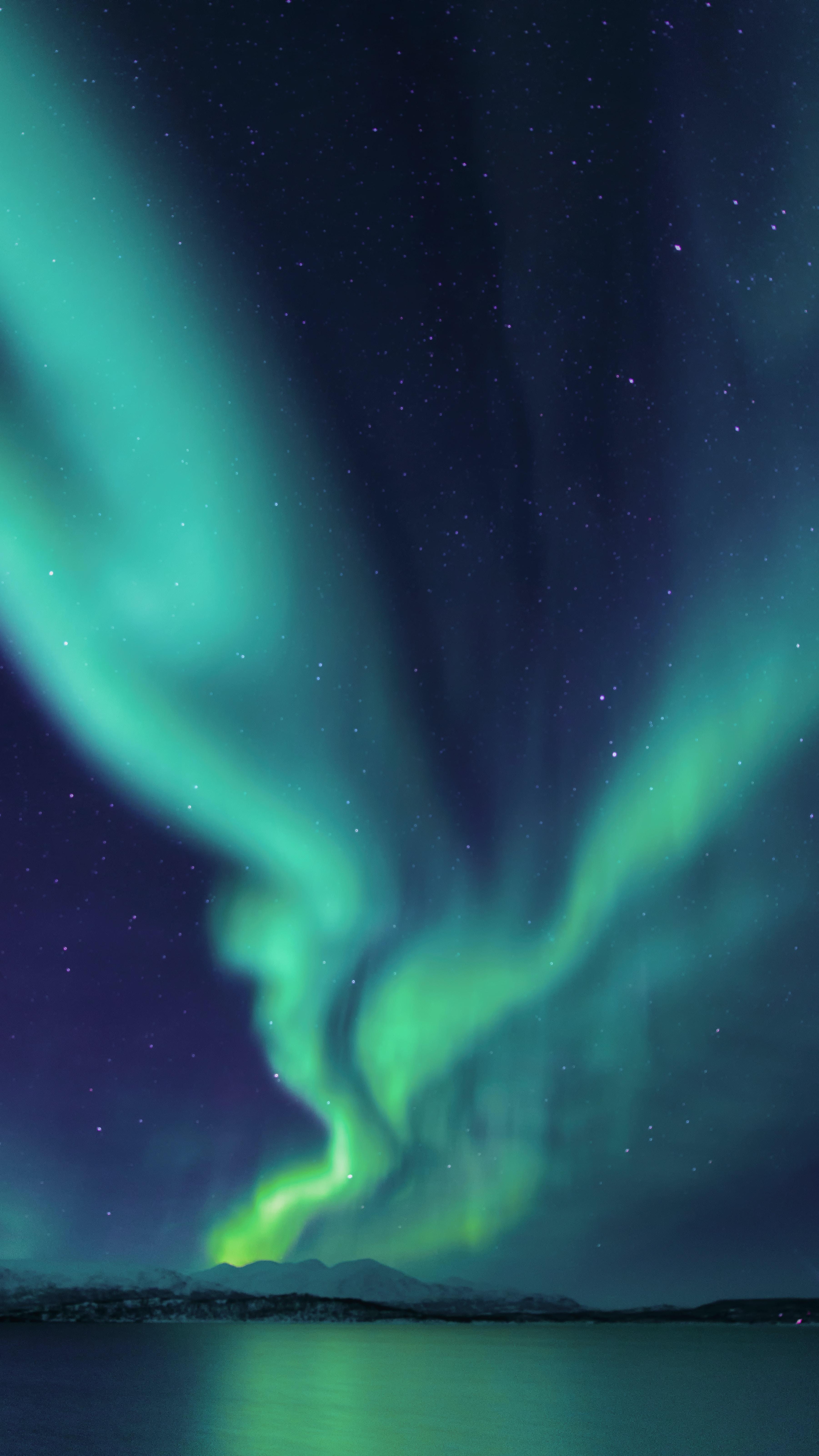 photograph of aurora lights