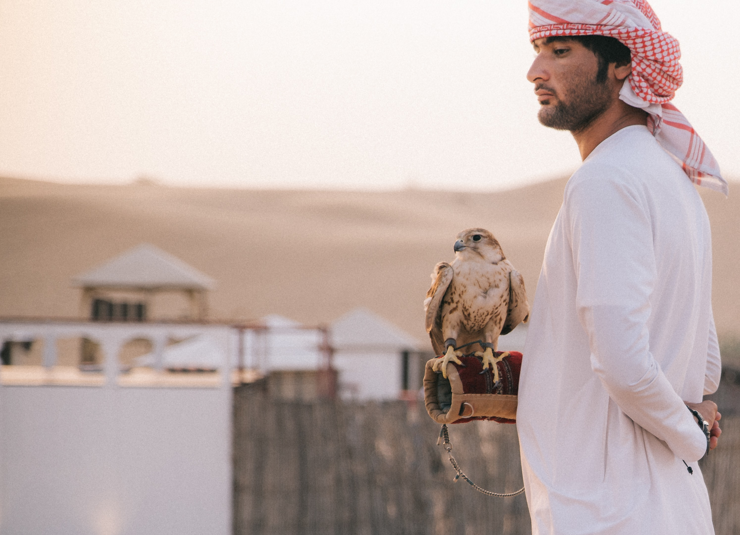 man standing beside eagle during daytime
